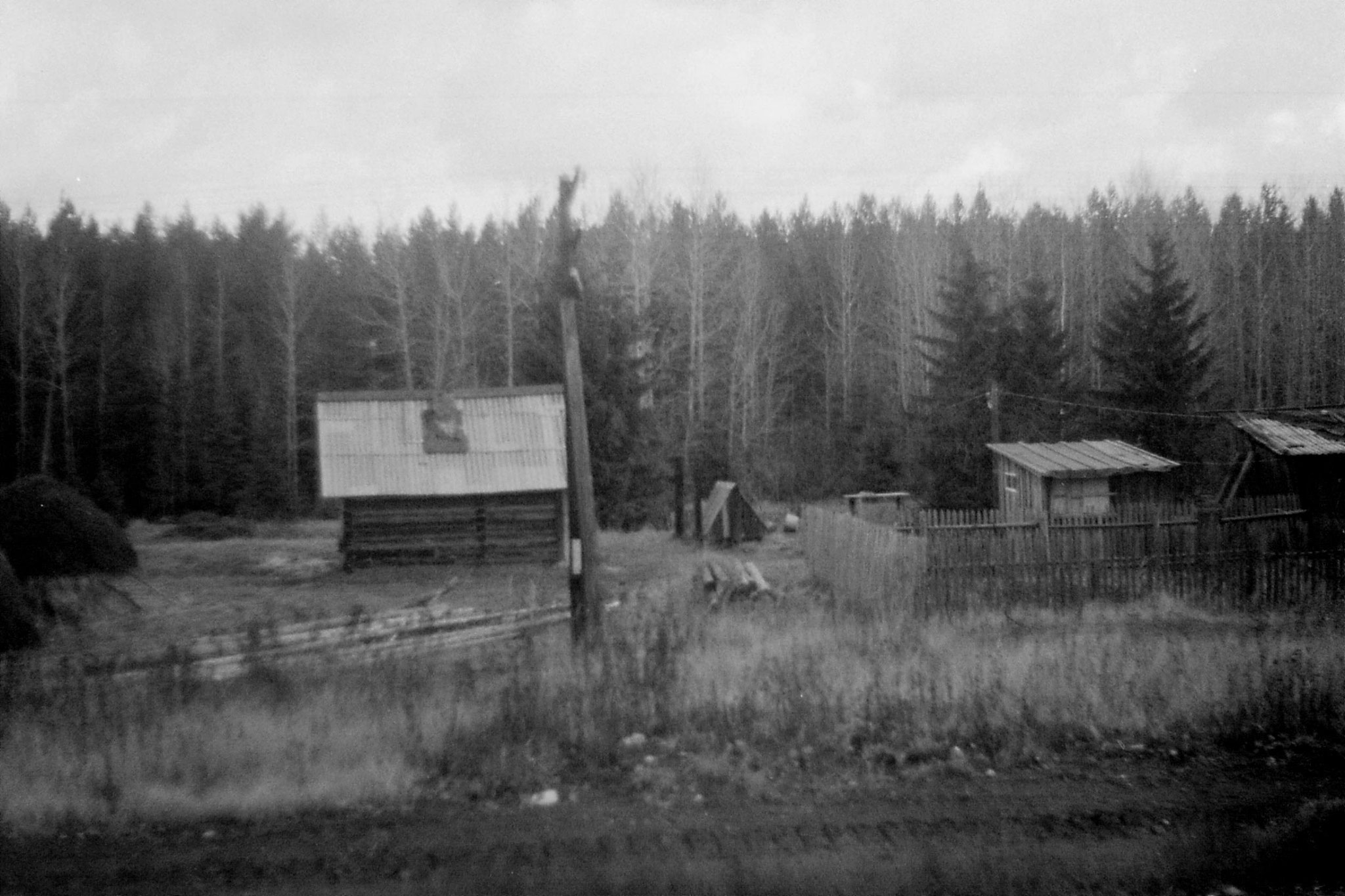 19/10/1988: 20: from Siberian Express between Balezino and Perm