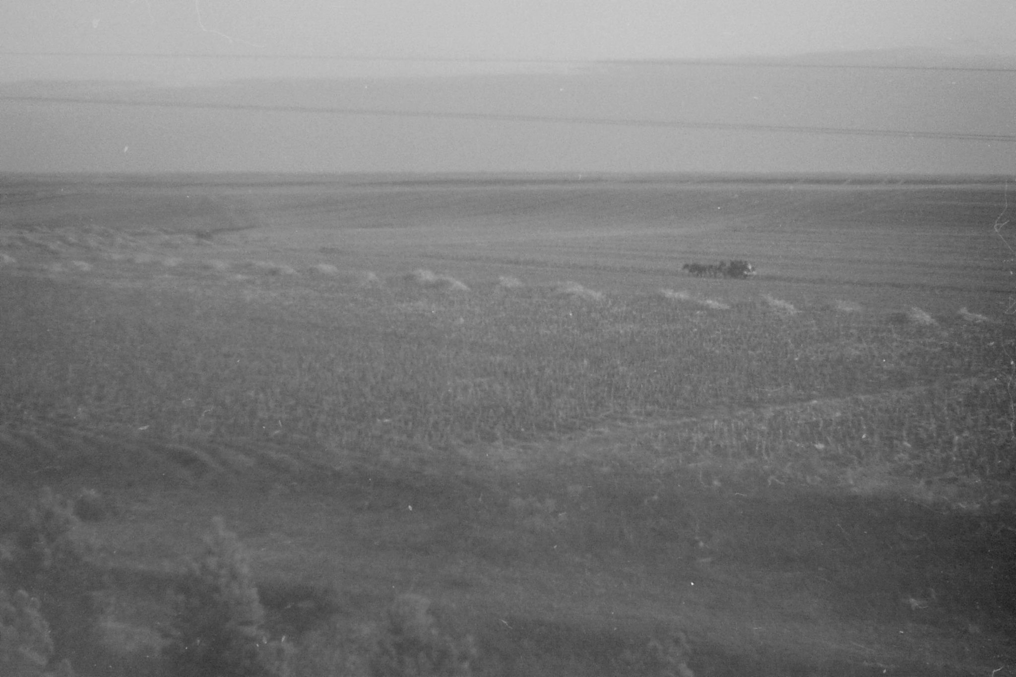 27/10/1988: 28: fields after Harbin