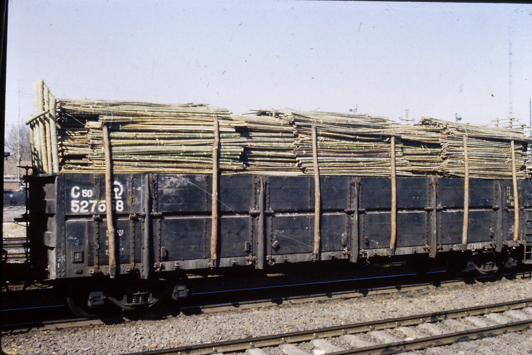 7/3/1989: 5: Journey Xian to Beijing, 1025 Anyang bamboo on train