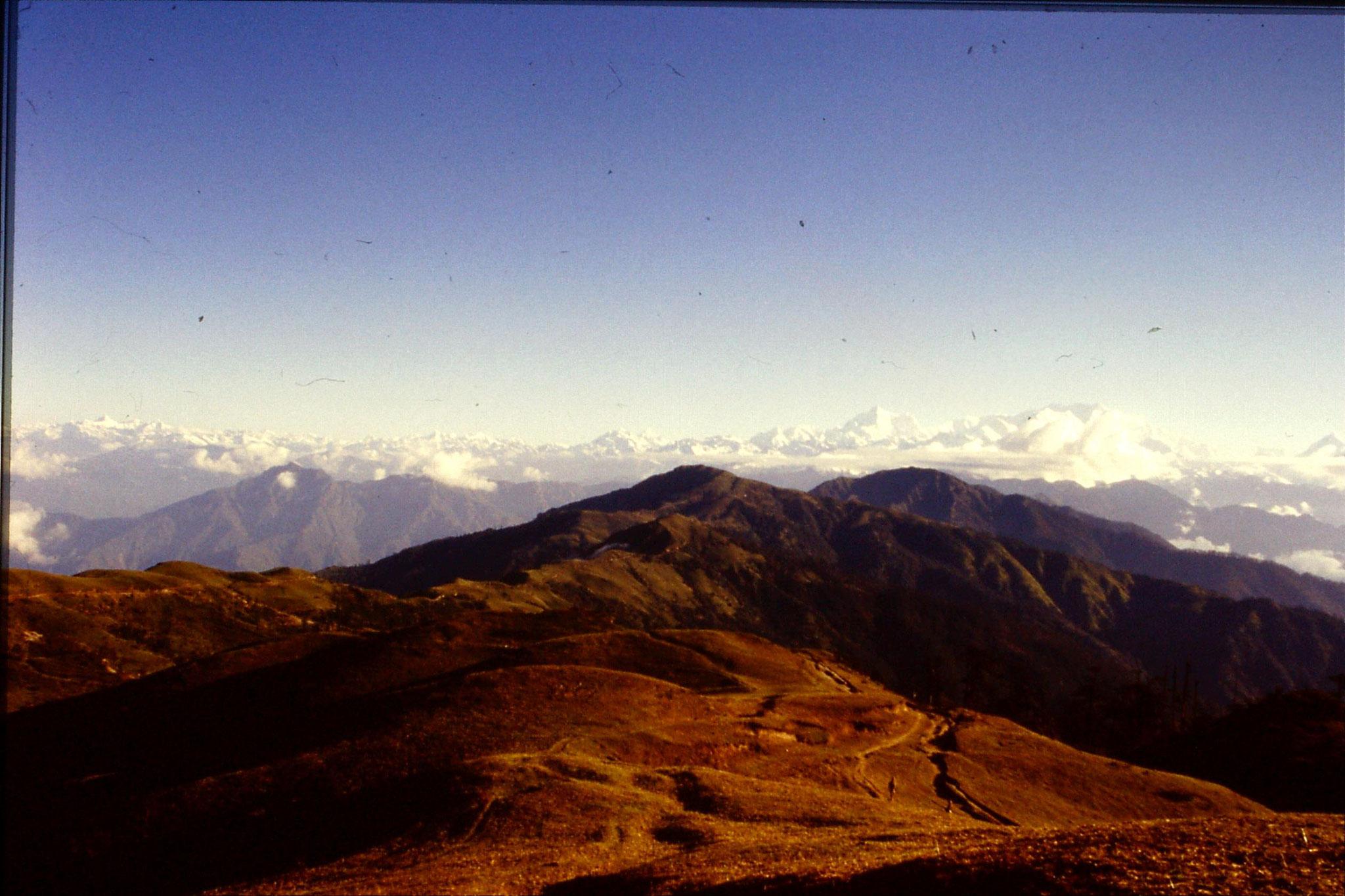 8/5/1990: 24: panorama