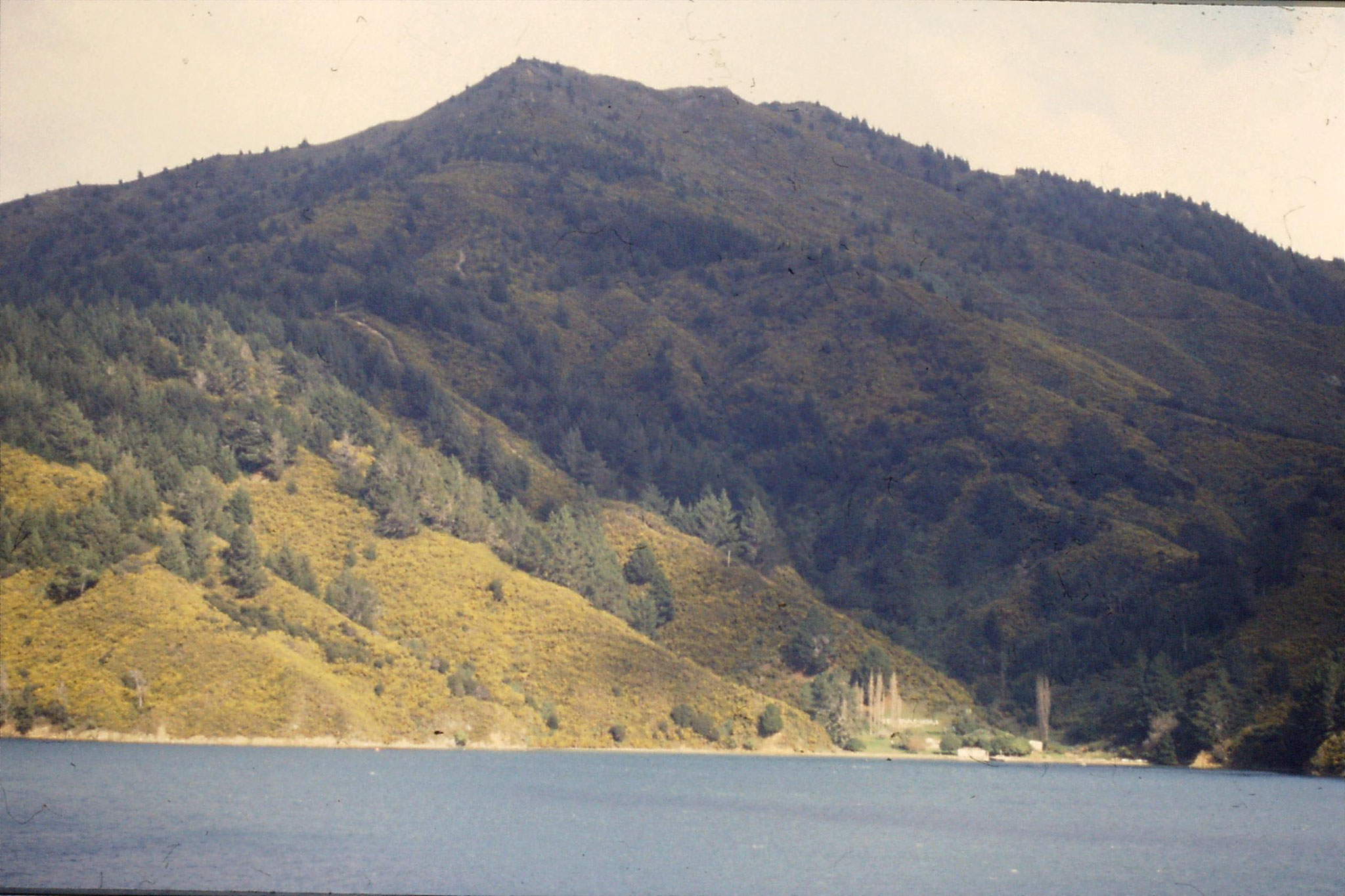 7/8/1990: 0: Wellington - Picton Ferry, Queen Charlotte Sound