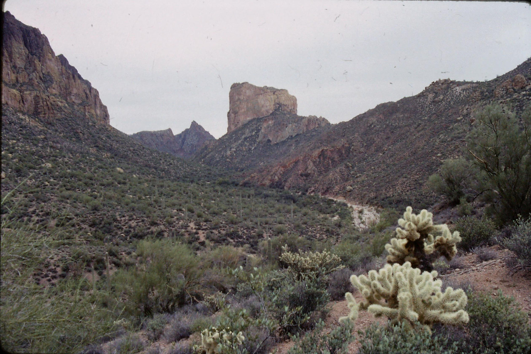 13/11/1990: 10: l to r - Geronimo Head, Battleship Mountain, Weaver's Needle, Superstition Mountain