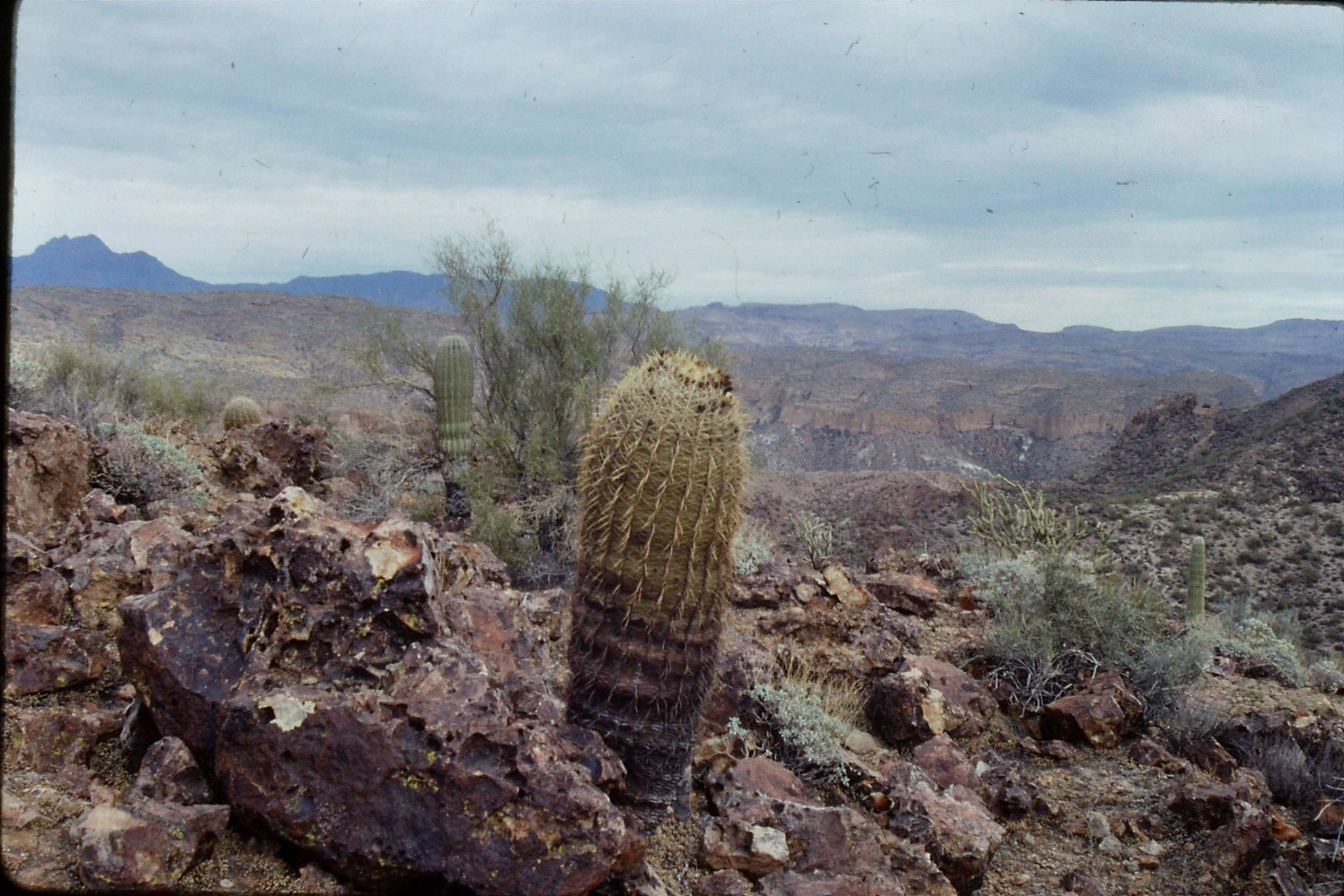 13/12/1990: 9: Phoenix, looking east over top of Canyon Lake
