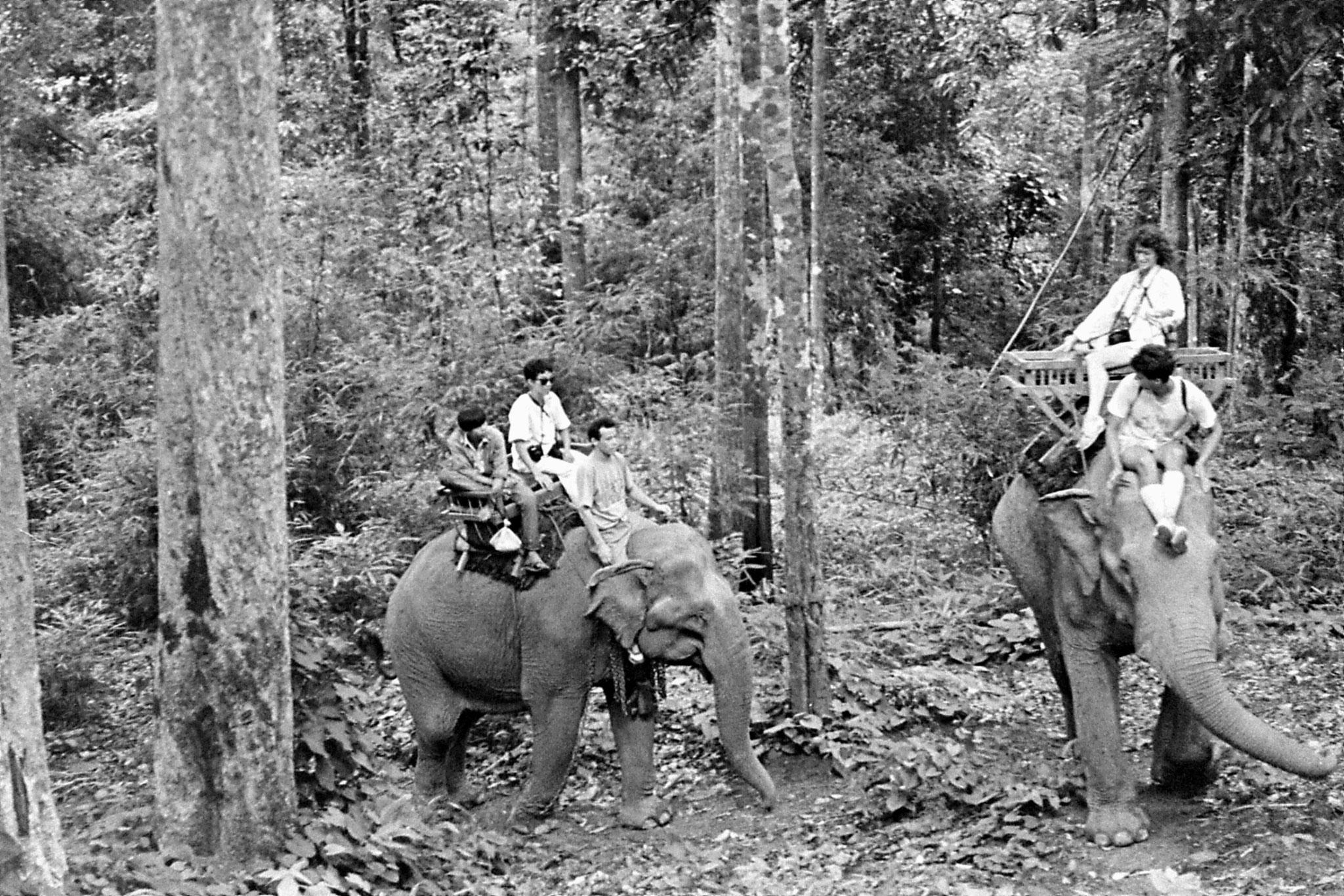 13/6/1990: 26: Last day of Trek, on elephant