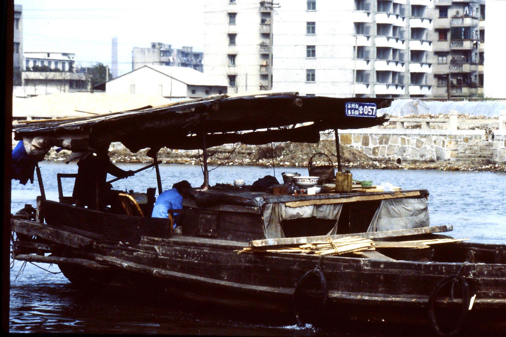 22/3/1989: 5: Suzhou: geese farm