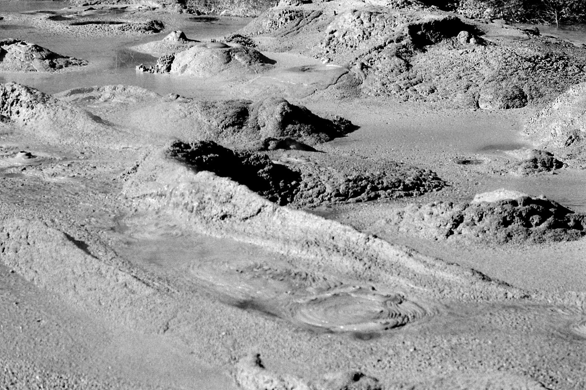 31/8/1990: 14: Rotorua mud pool