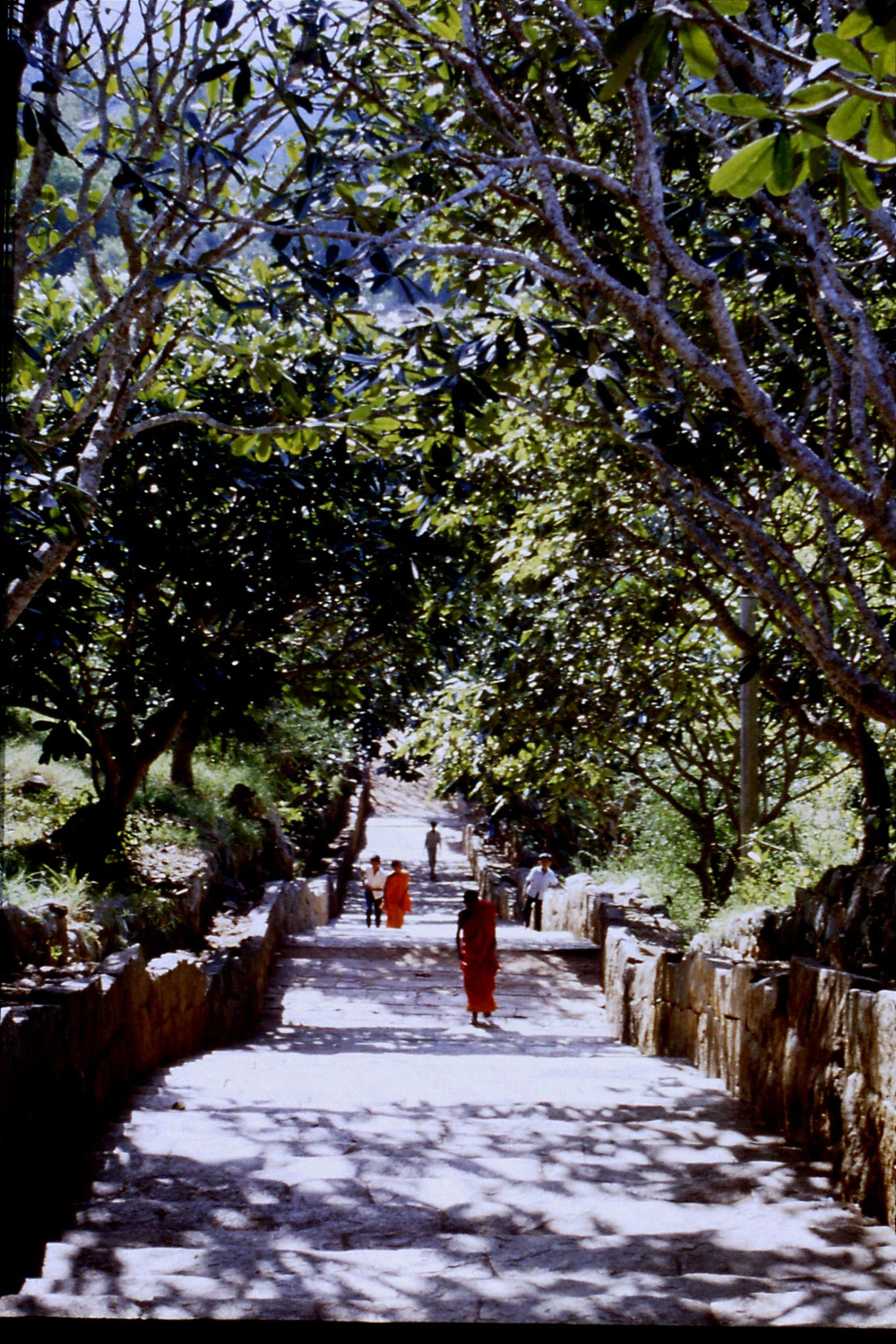 104/2: 8/2/1990 two monks on staircase at Mihintale