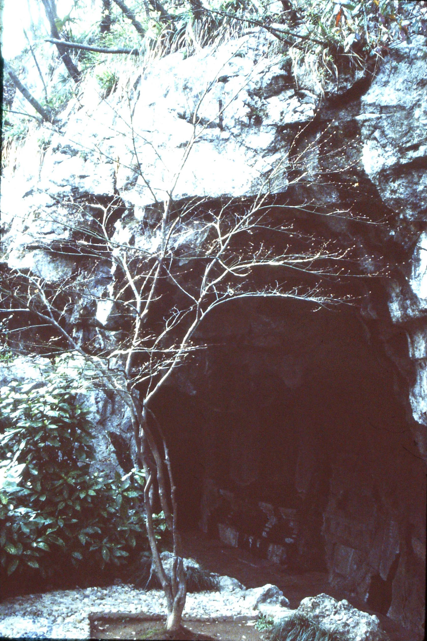 26/3/1989: 20: Cave at Shiwu south of Xihu Lake
