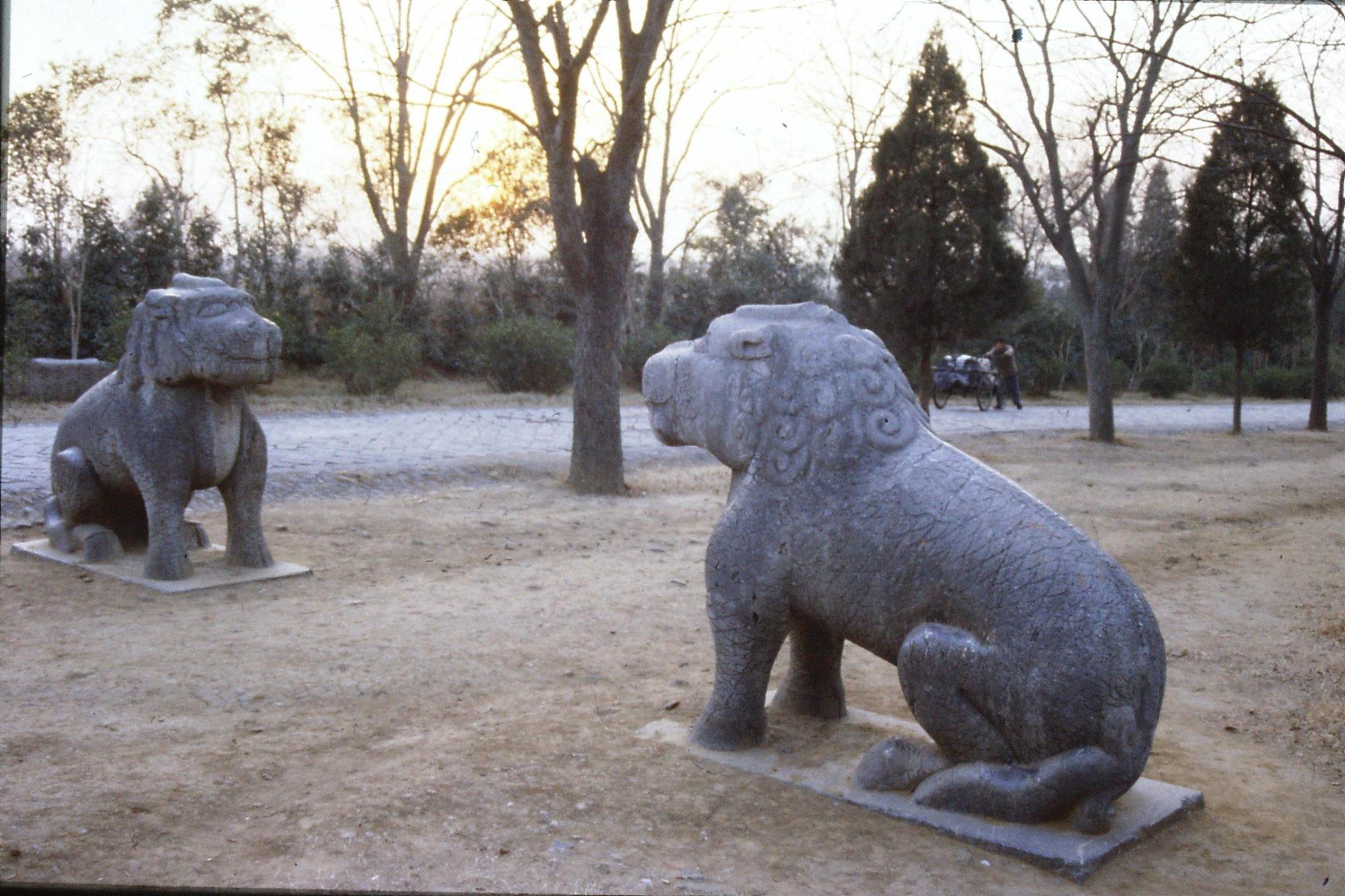 12/12/1988: 3: Nanjing Linggu Park