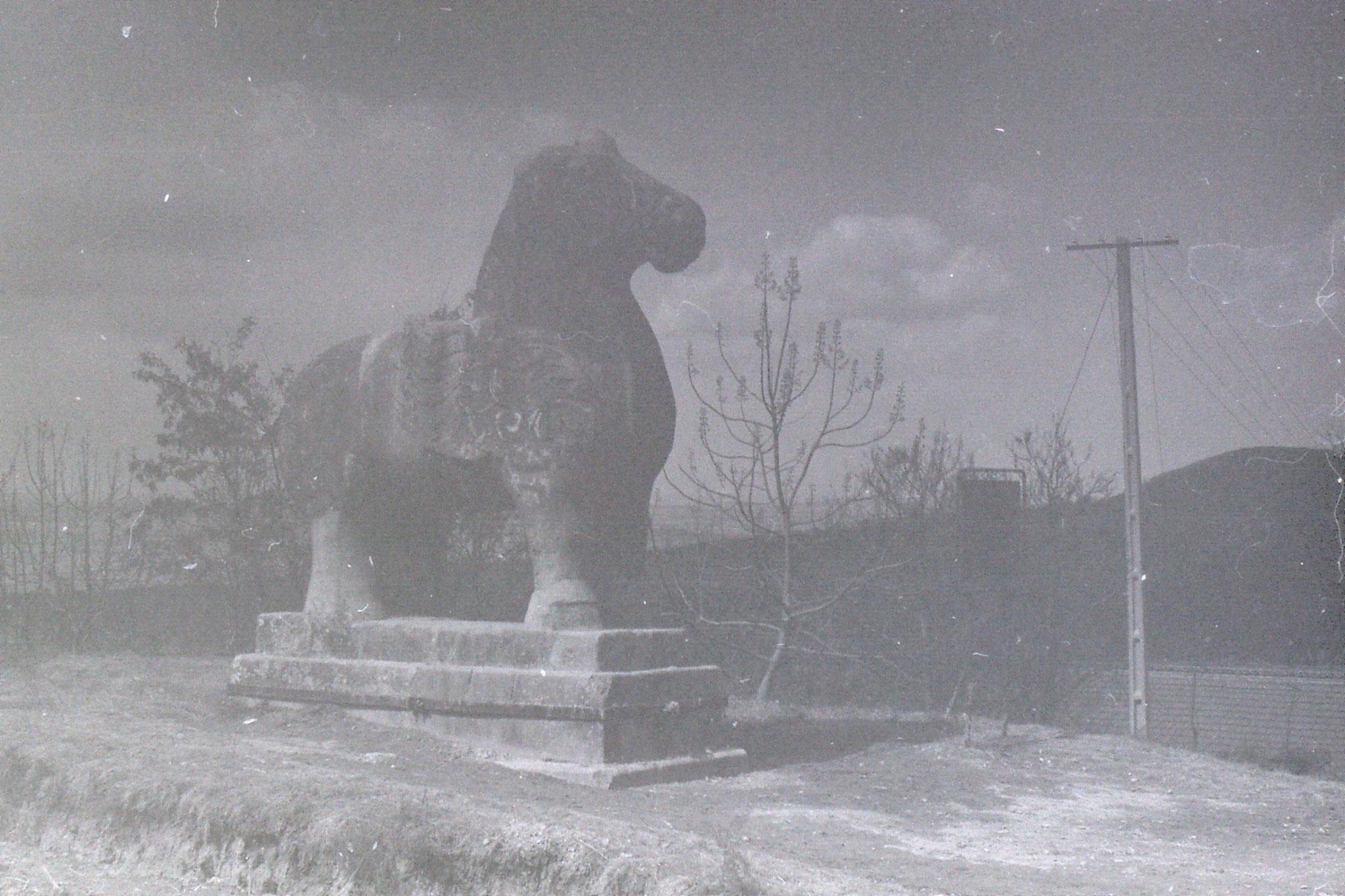 7/3/1989: 24: Xianyang stone winged horses