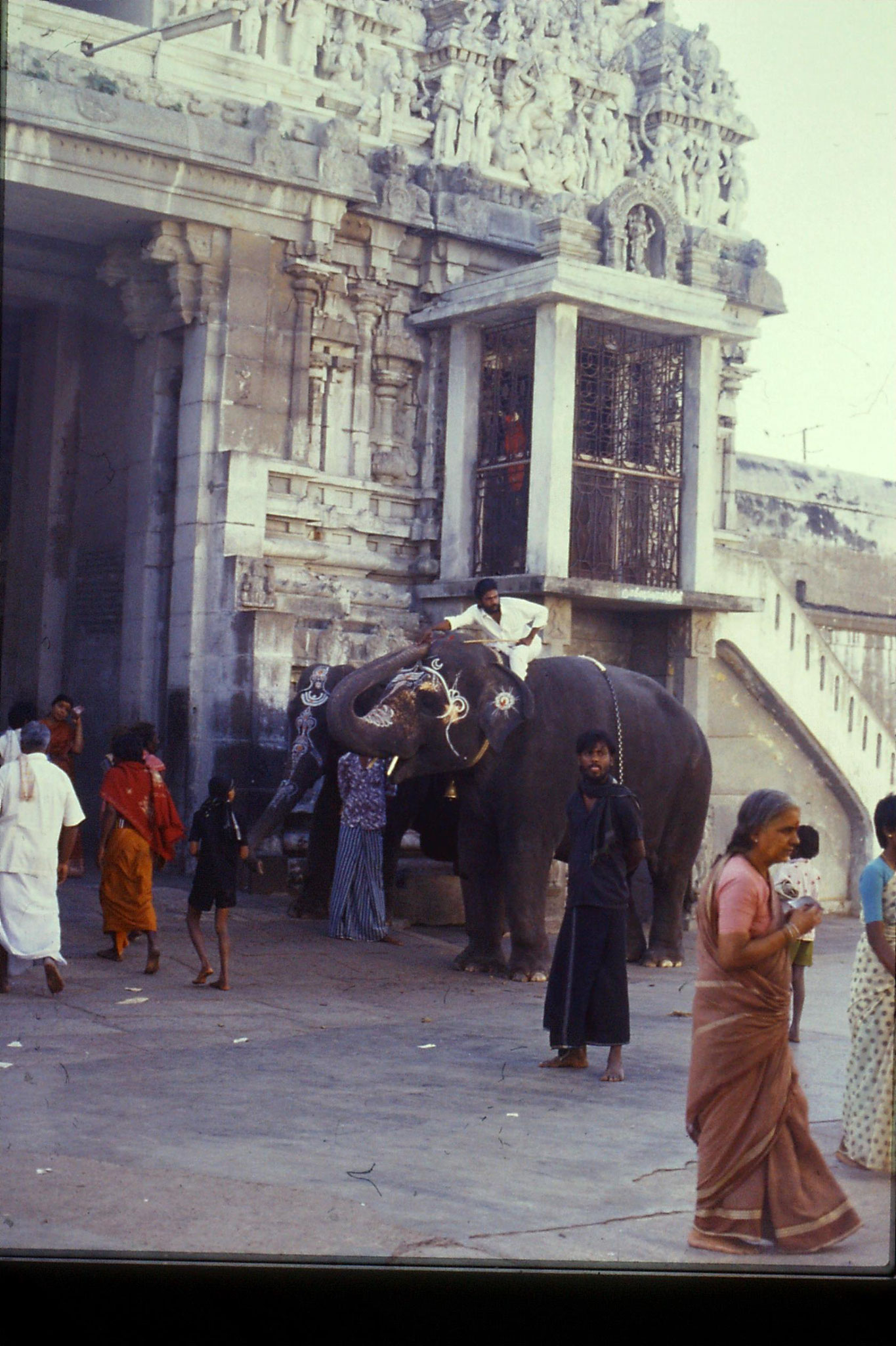 19/1/1990: 16: Kamakshi temple, elephant collecting money