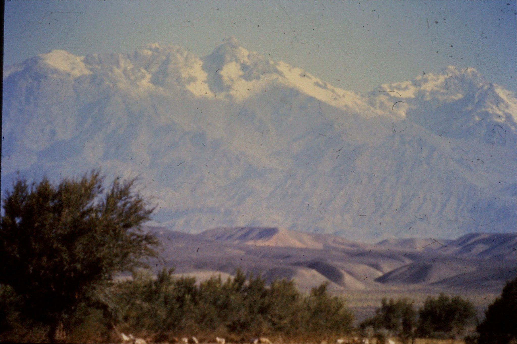 23/8/1989:15: Gansu, 2045 dry plain in front of snowy mountains