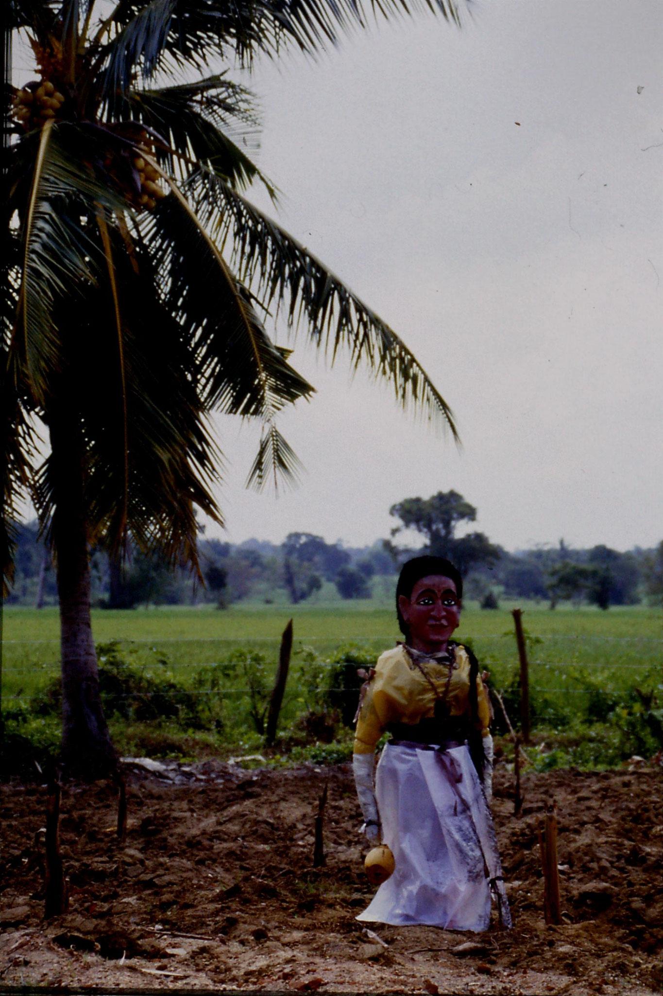 102/32: 7/2/1990 Sigiriya - 'Elegant' scarecrow at Giritale