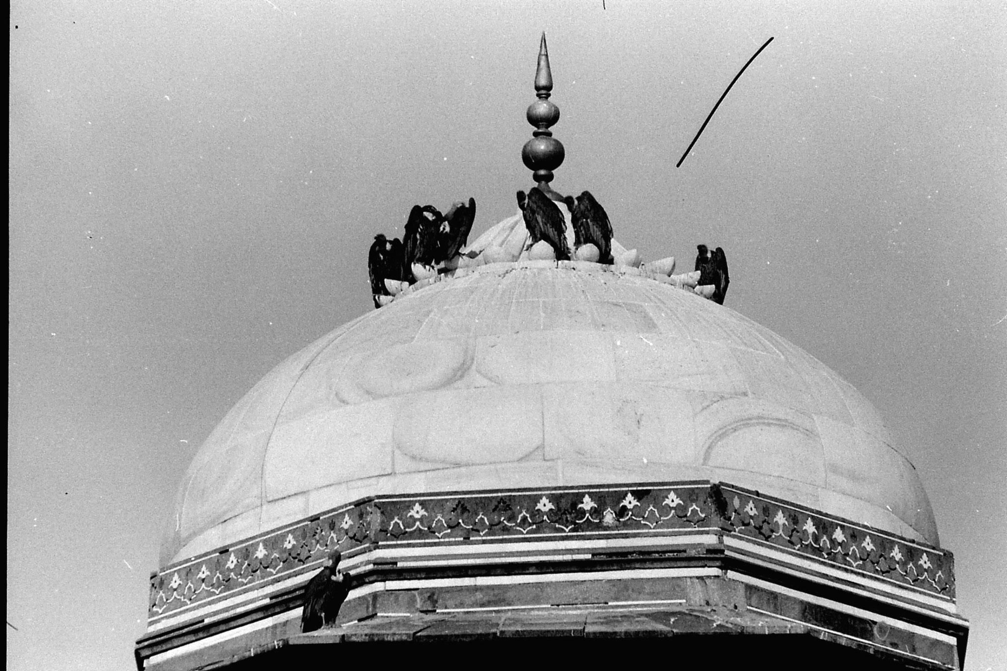 31/3/90: 34: Taj Mahal