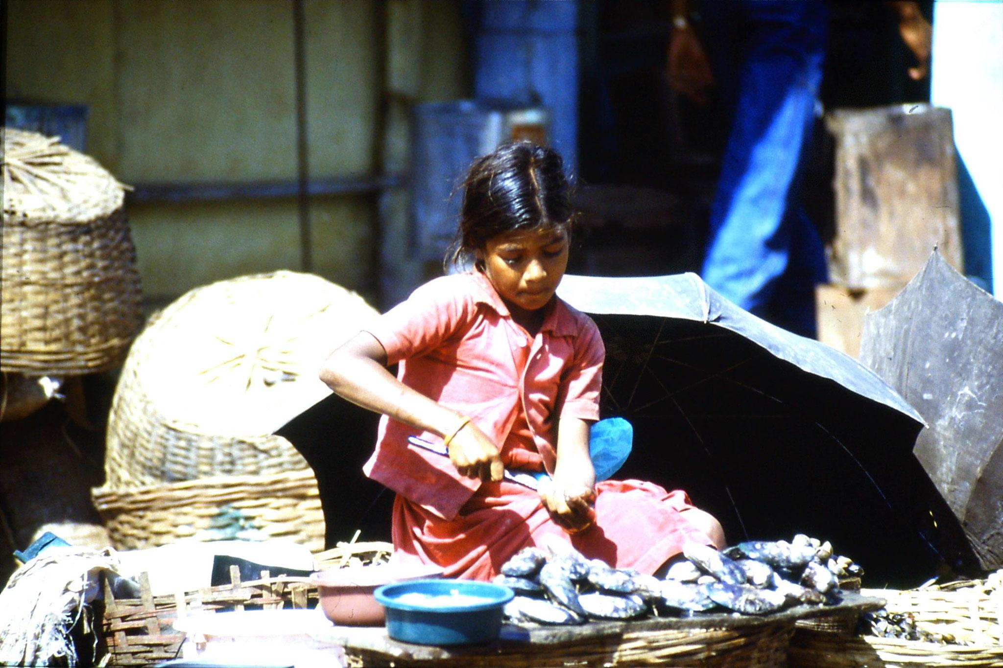 6/1/1990: 6: Mapusa market girl preparing shell fish