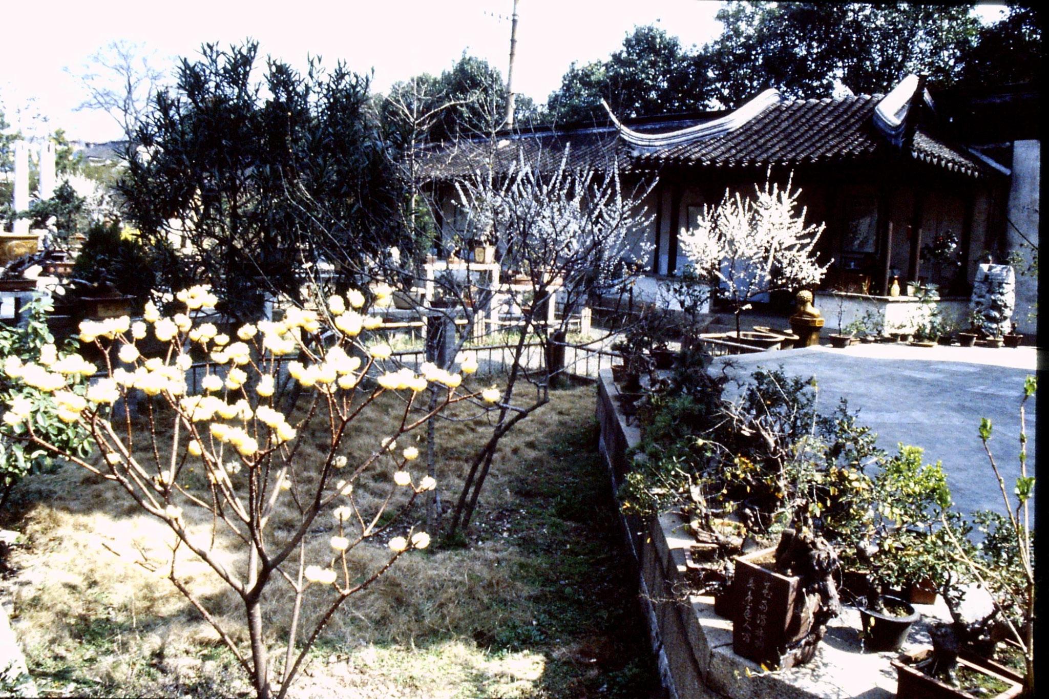 21/3/1989: 25: Suzhou Twin Pagoda
