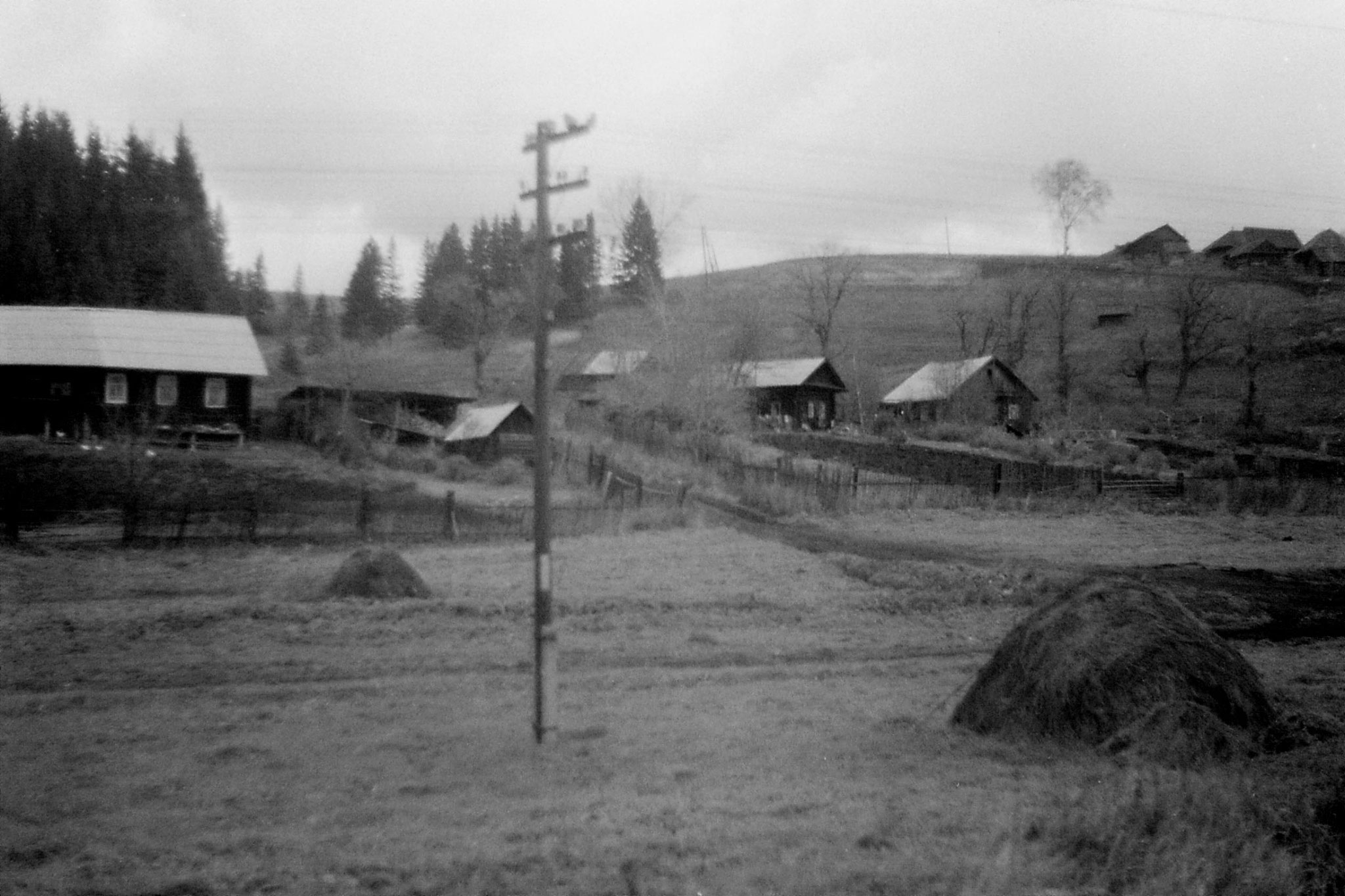 19/10/1988: 26: from Siberian Express between Balezino and Perm