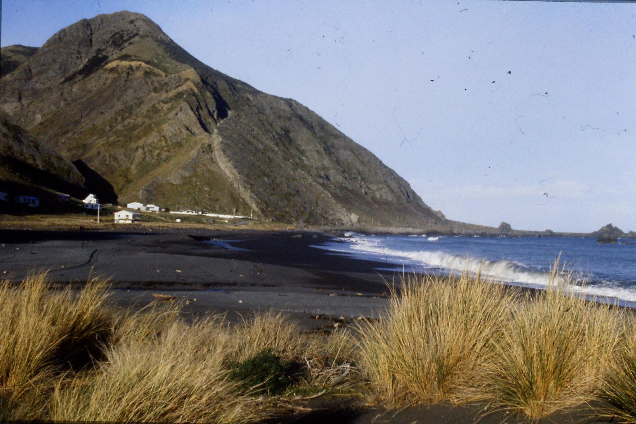 26/8/1990: 13:  Cape Palliser