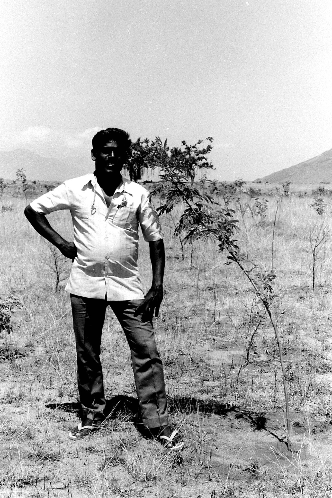 21/2/1990: 21: Batlagundi afforestation project