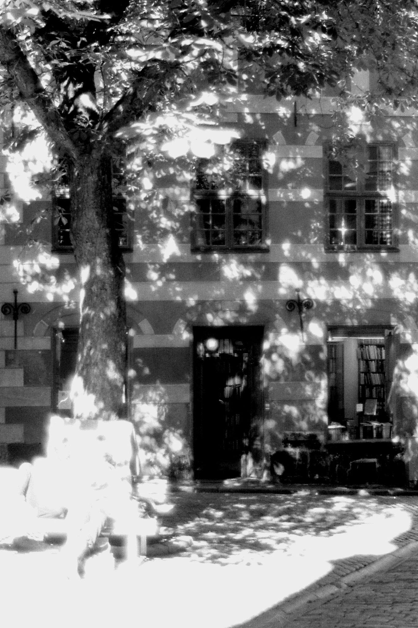 8/9/1988: 42: bookshop