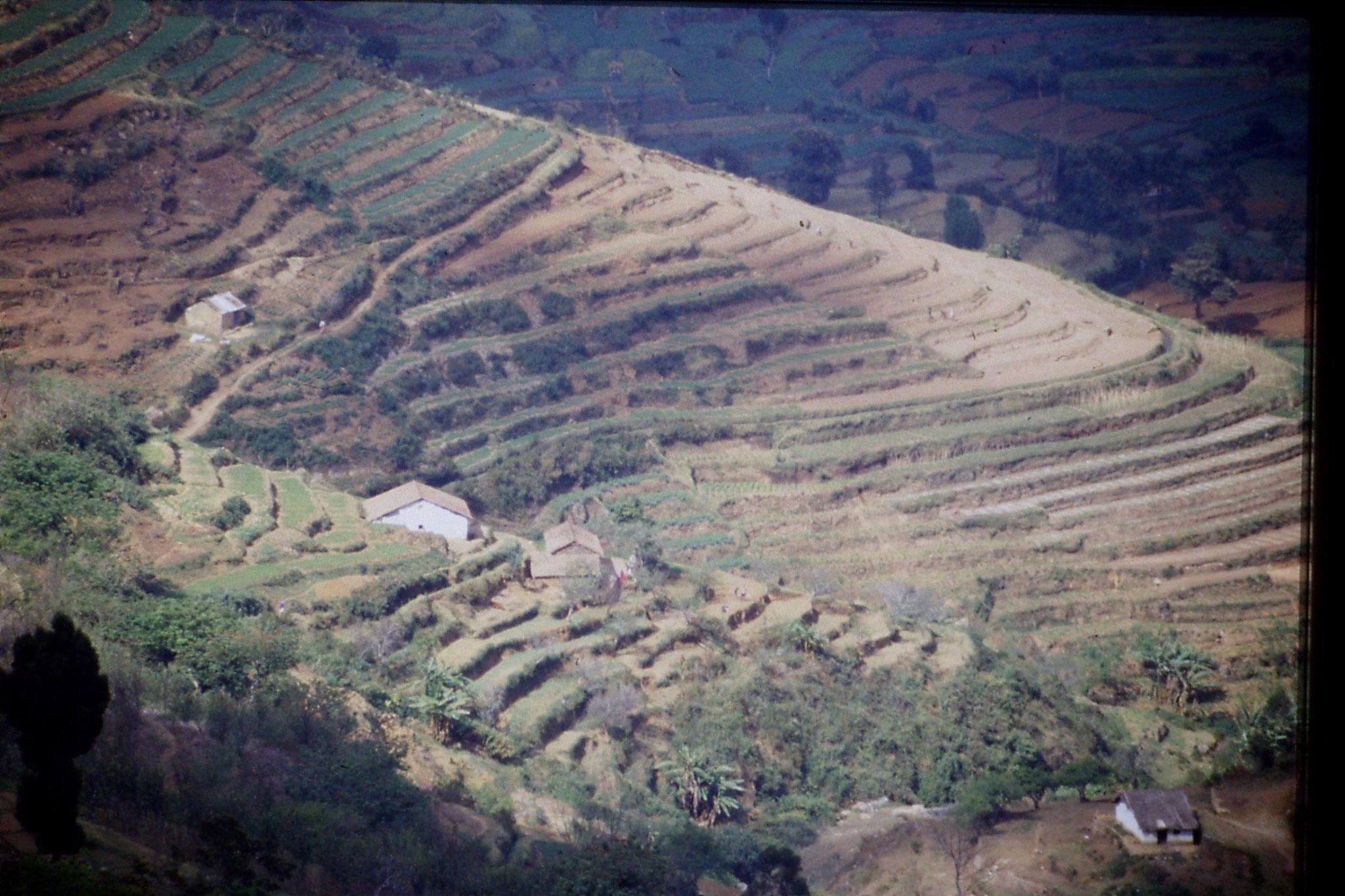 104/25: 20/2/1990 Vilpatti village and surroundings from Kodai road