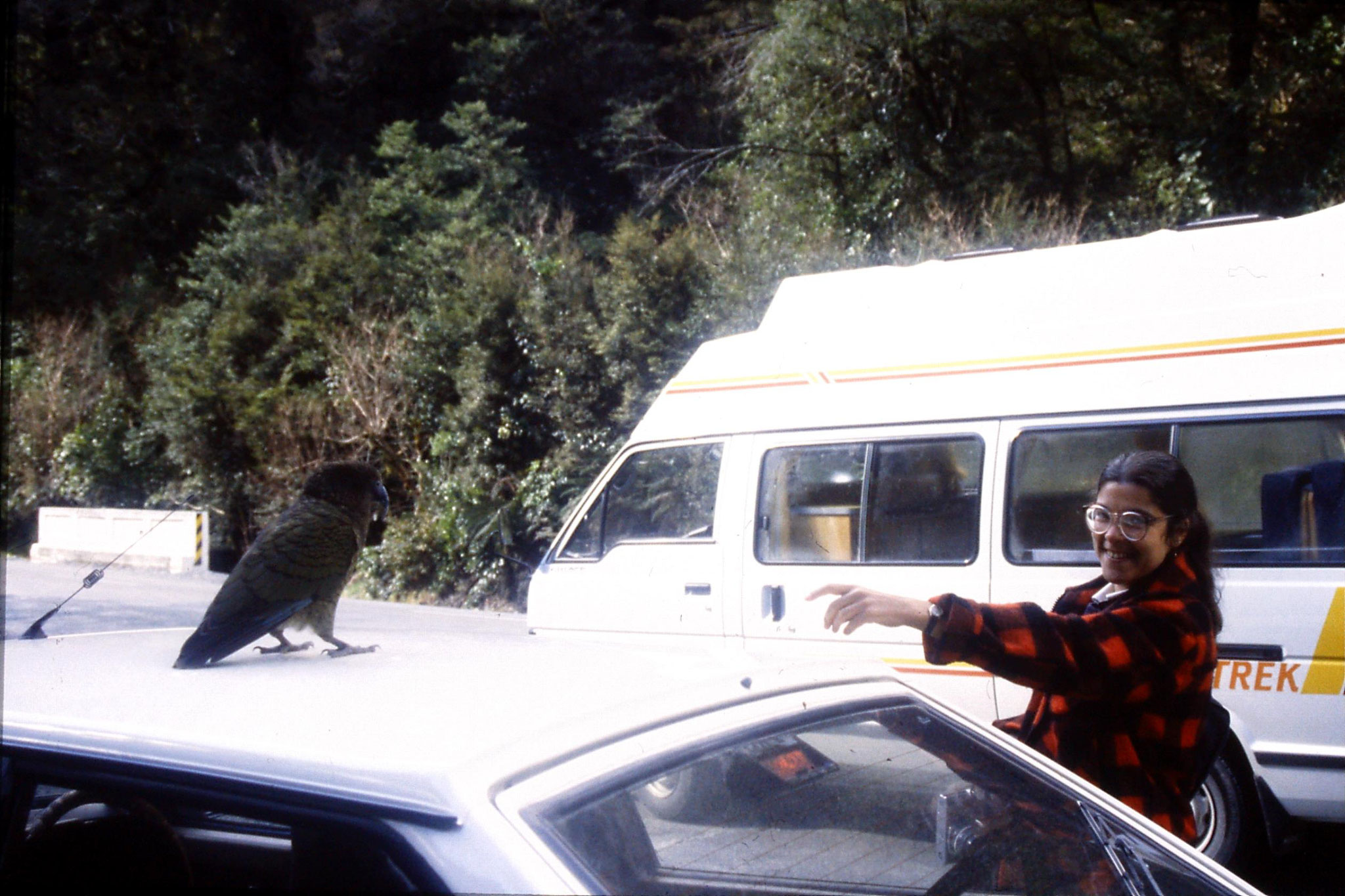 15/8/1990: 6: Kea on car