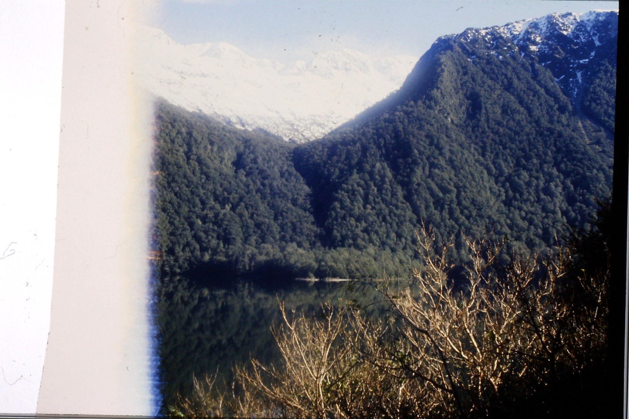 15/8/1990: 2: Lake Gunn from road