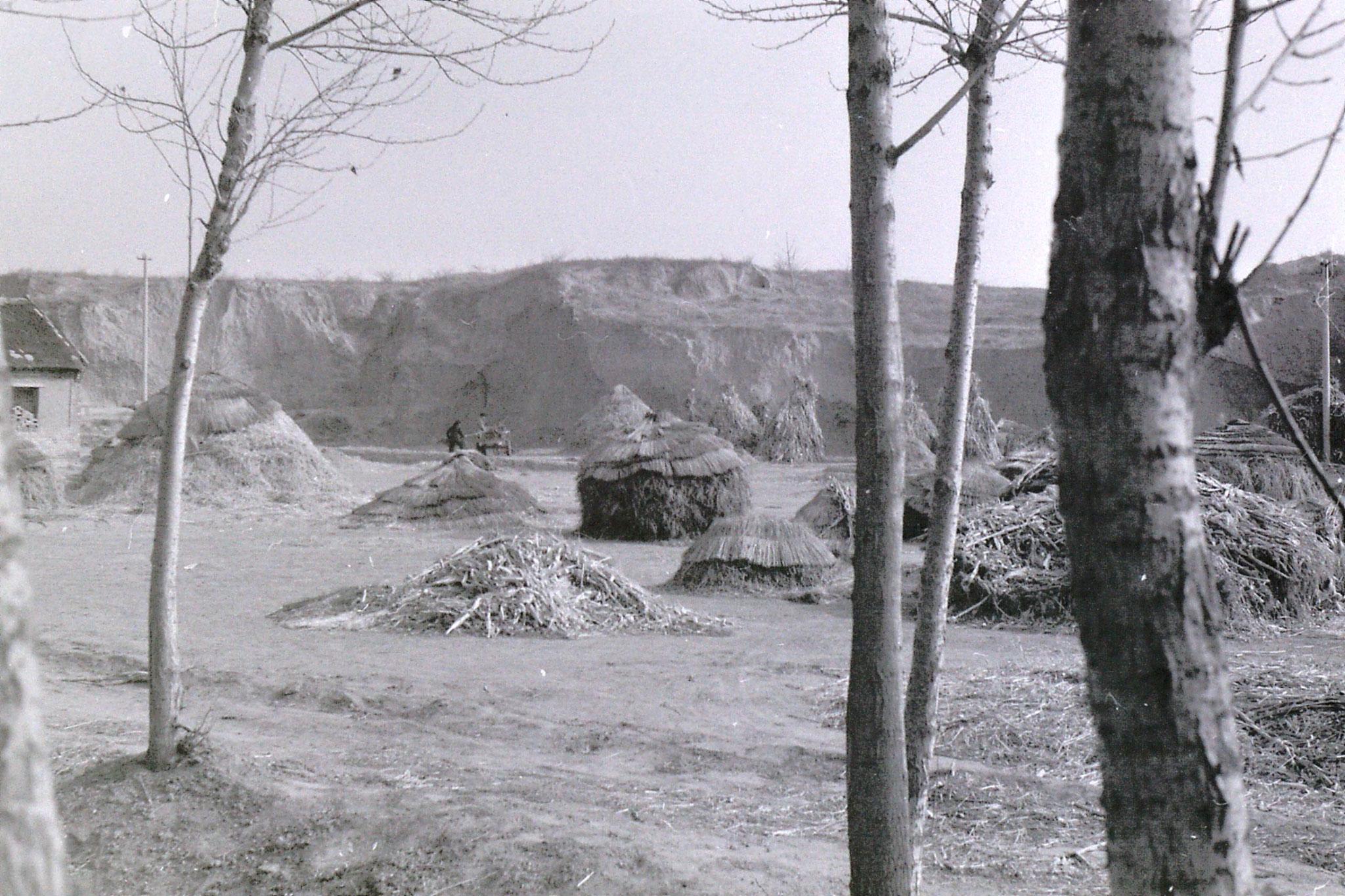 15/2/1989: 0: Liu Bo's village