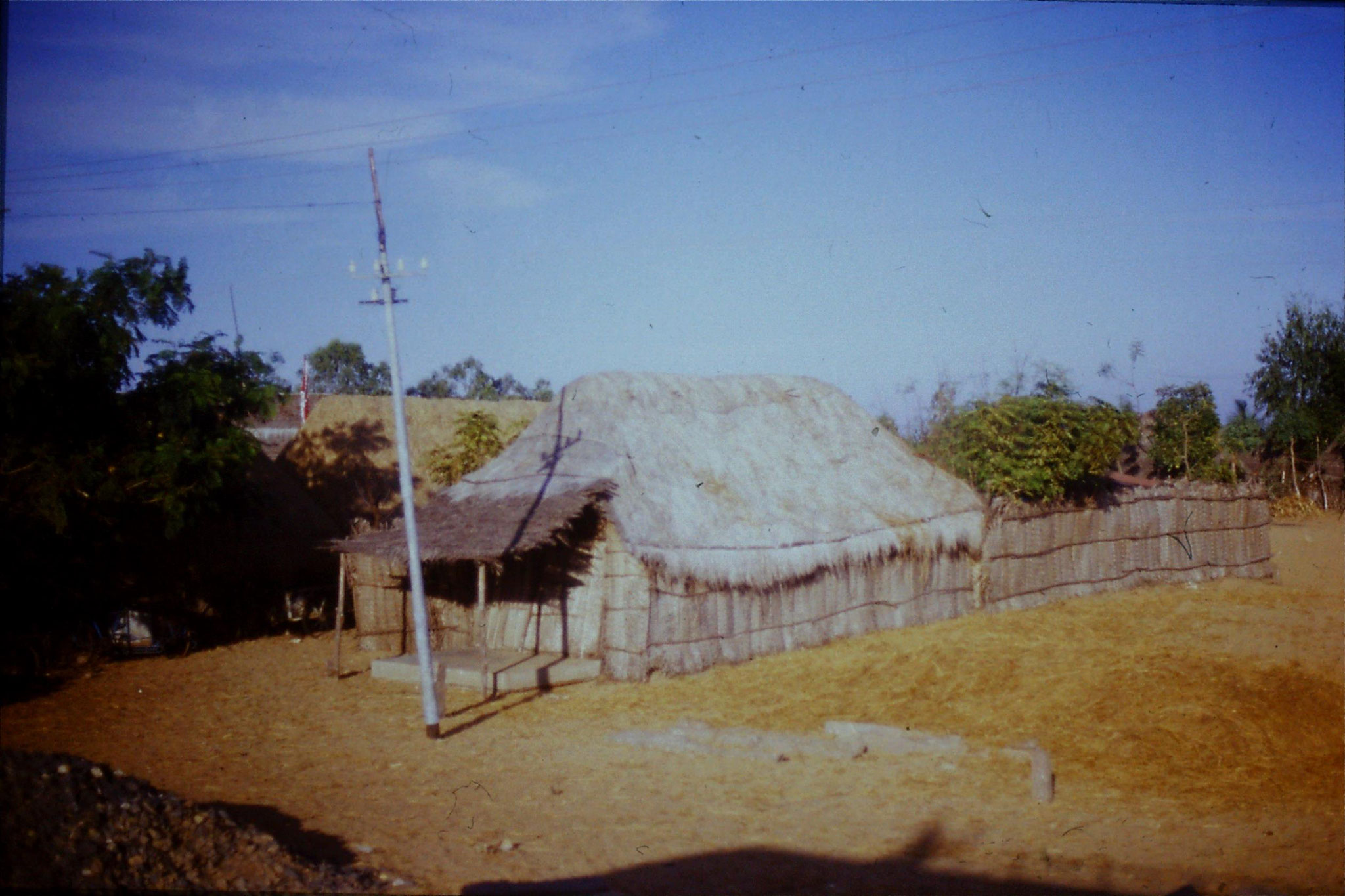 19/1/1990: 25: on road south of Madras, typical thatched house
