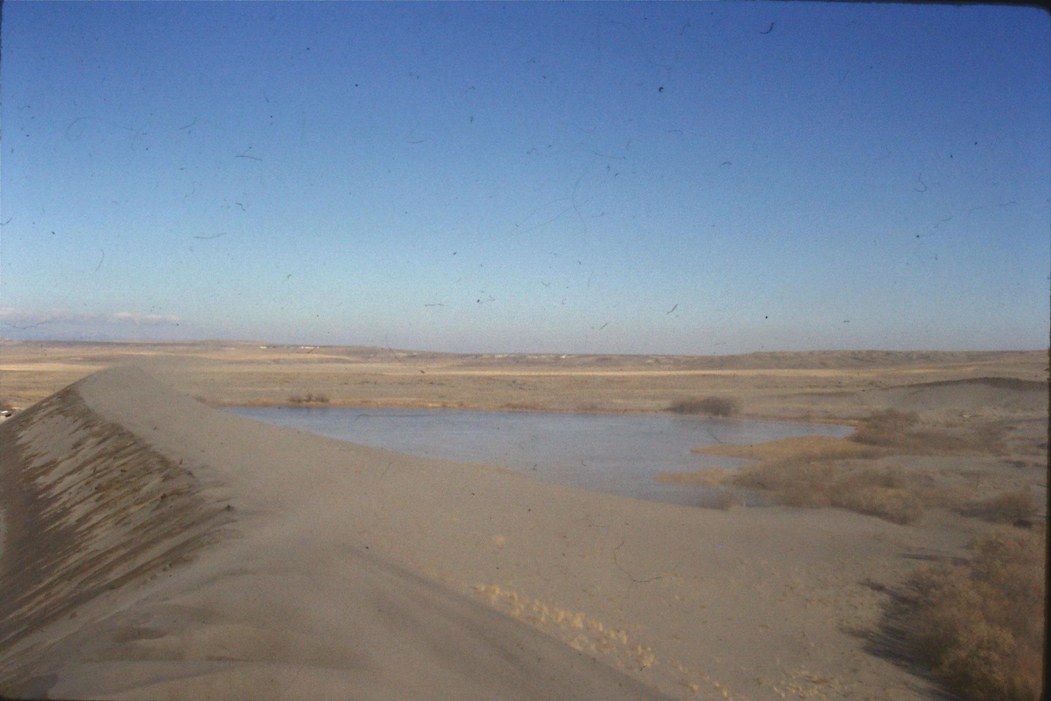 24/1/1991: 34: Bruneau Sand Dunes