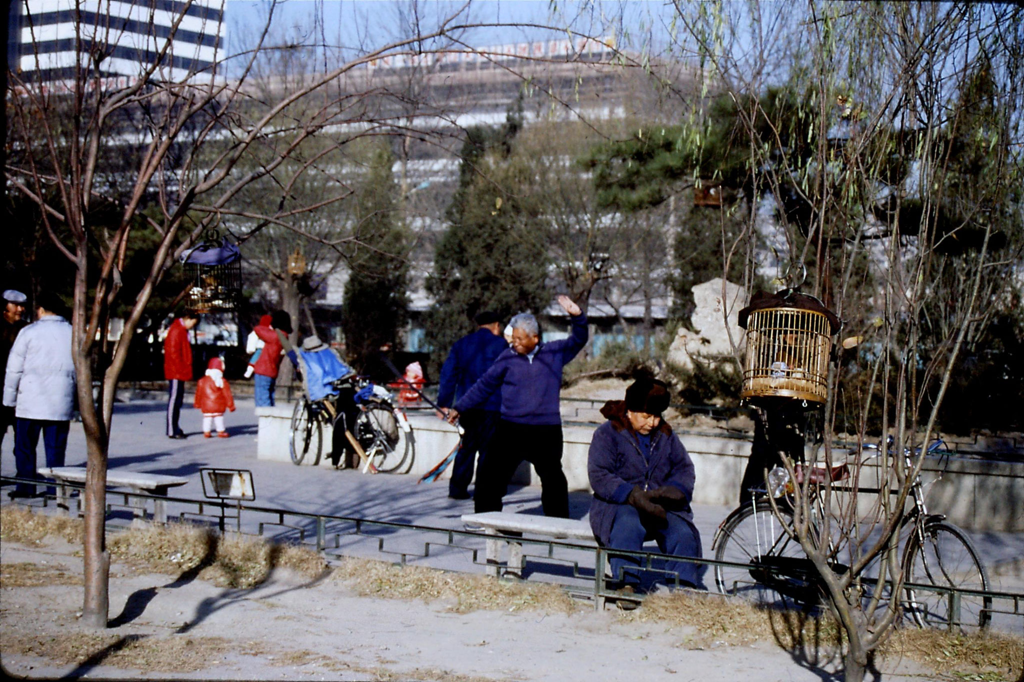 5/12/1988: 16: bird cages near China Photo
