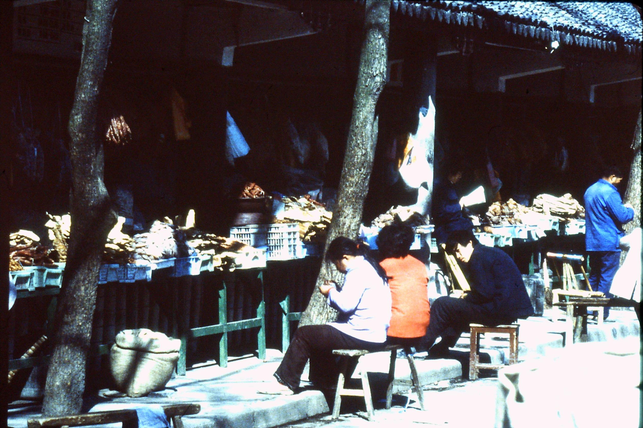 21/3/1989: 32: Suzhou fish stalls