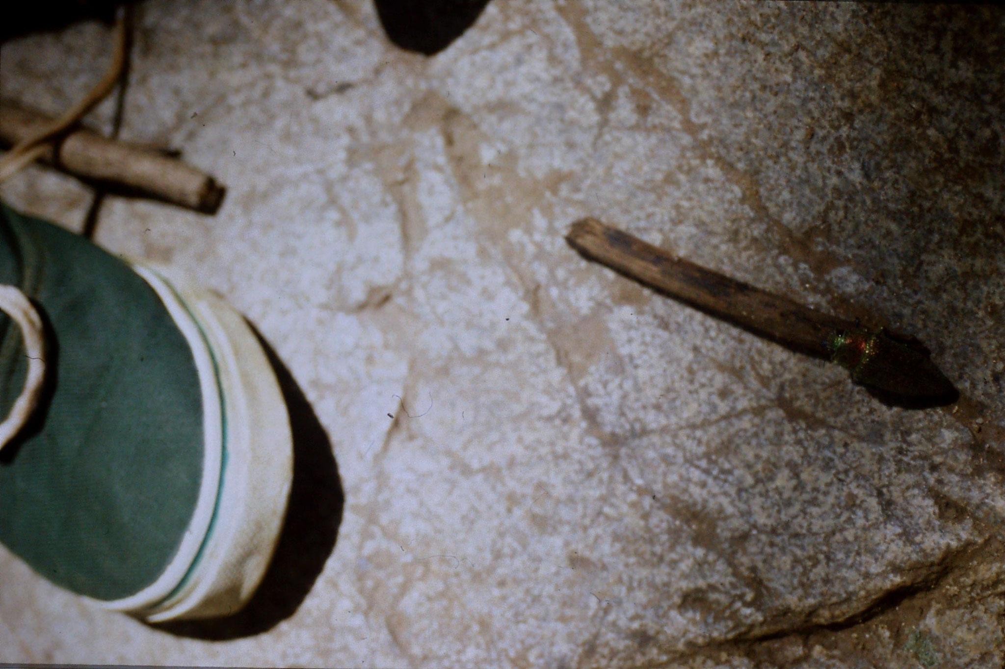12/6/1990: 16: Trek - beetle