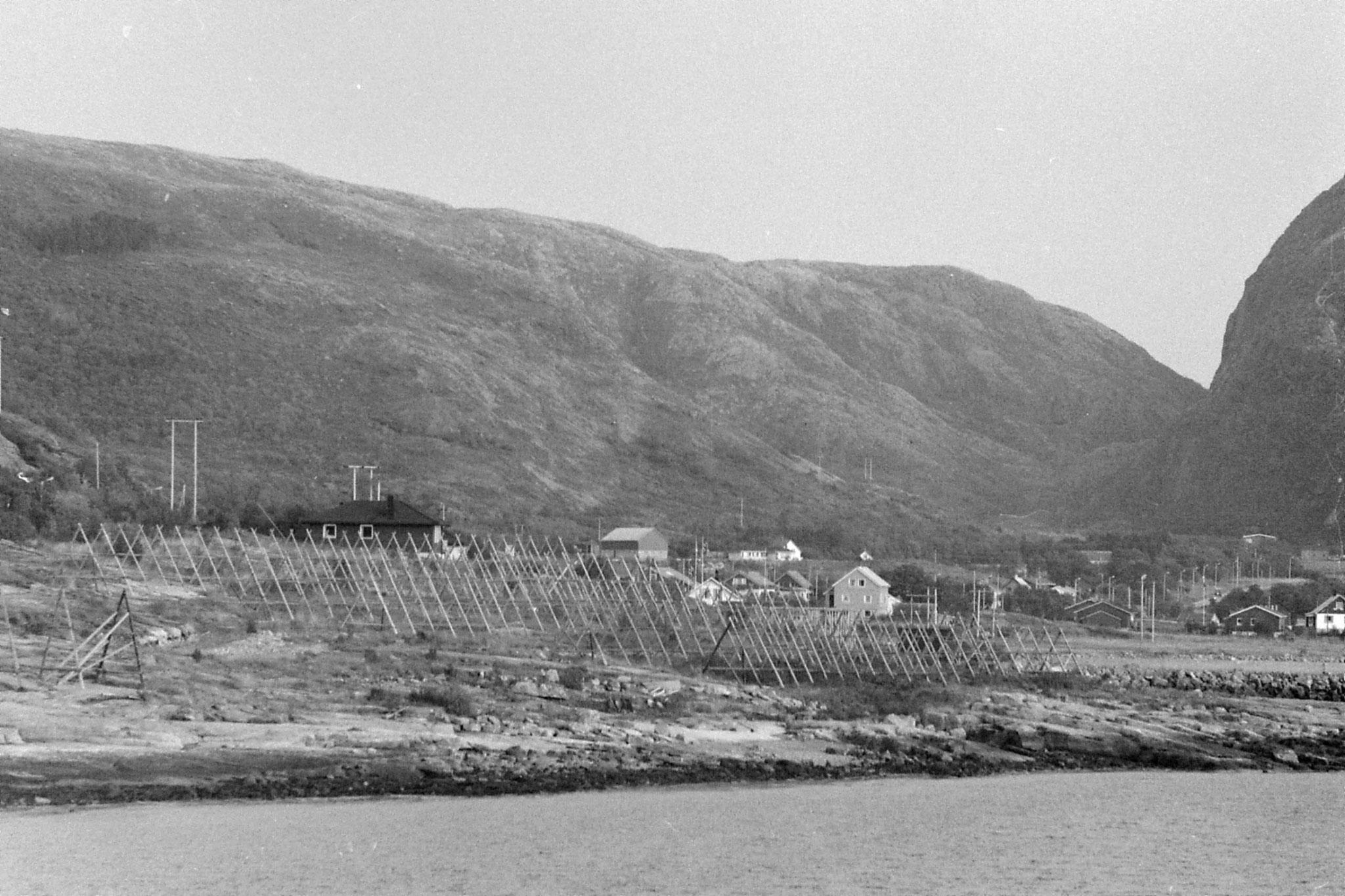 23/9/1988: 8: fish drying nets? north of Stoksund