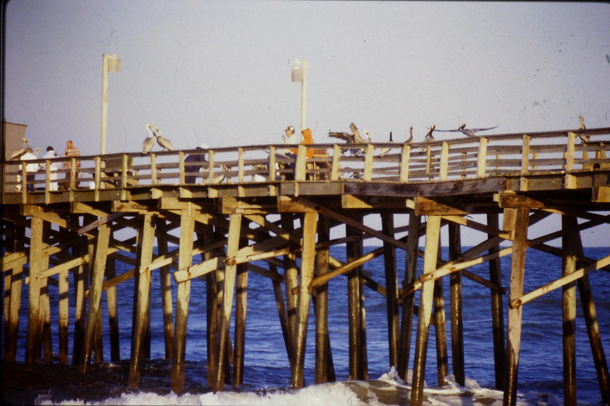 12/3/1991: 10: St Augustine Beach