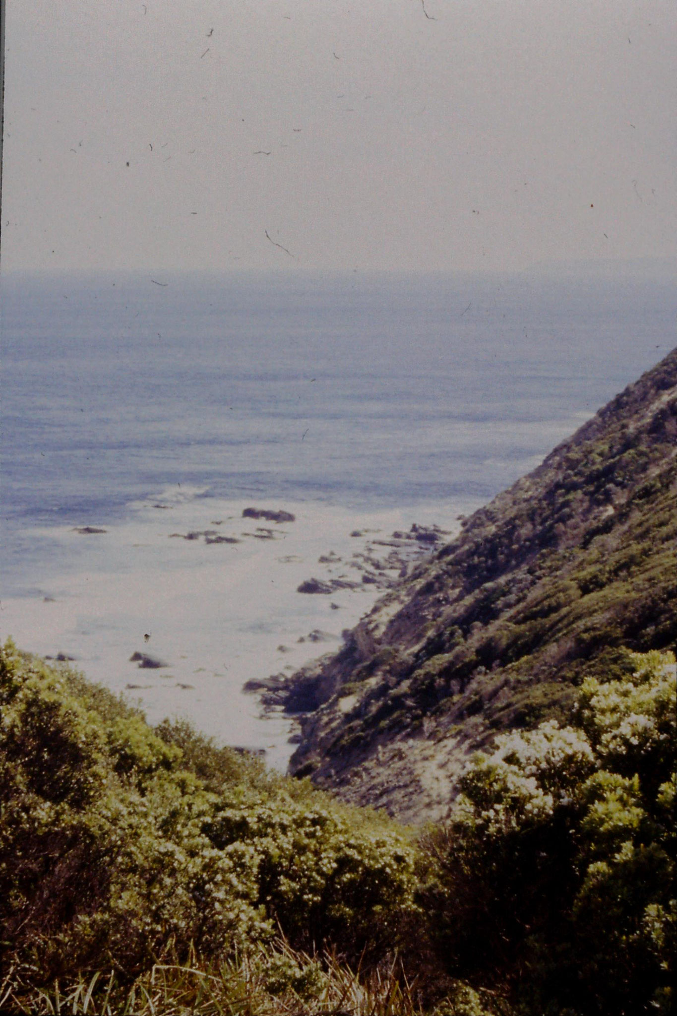 19/9/1990: 23: west from Cape Otway