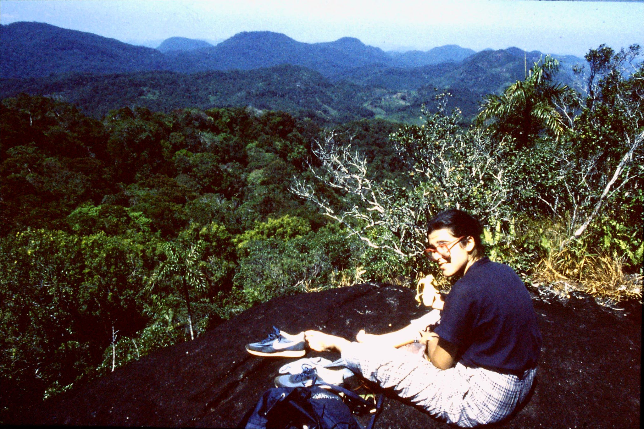29/1/1990: 8: view across Sinharaja from top of Mouk wella hill