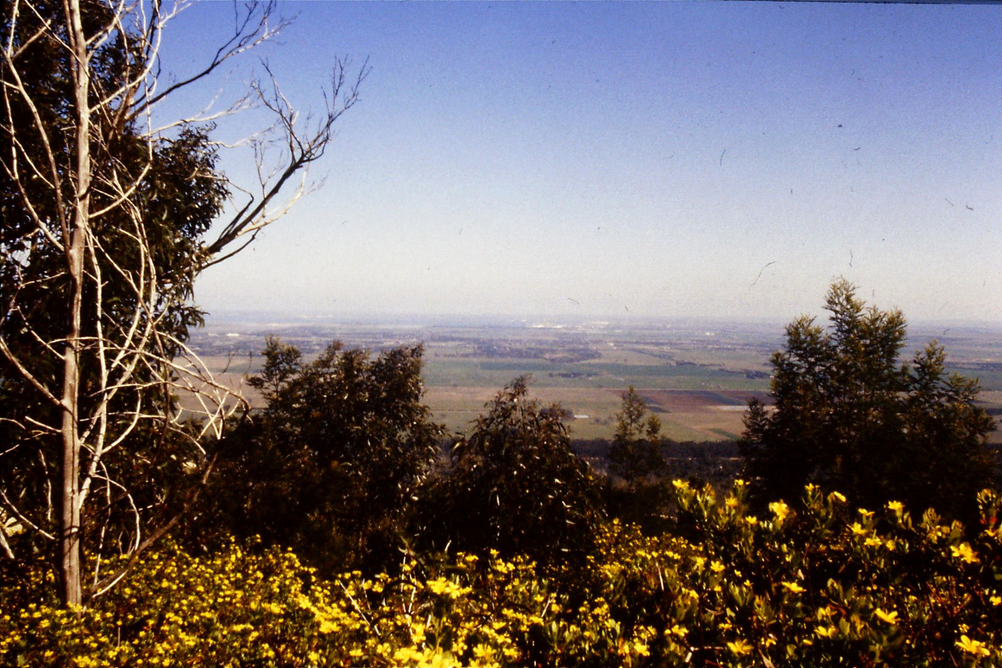 17/9/1990: 18: looking towards Pt Flinders
