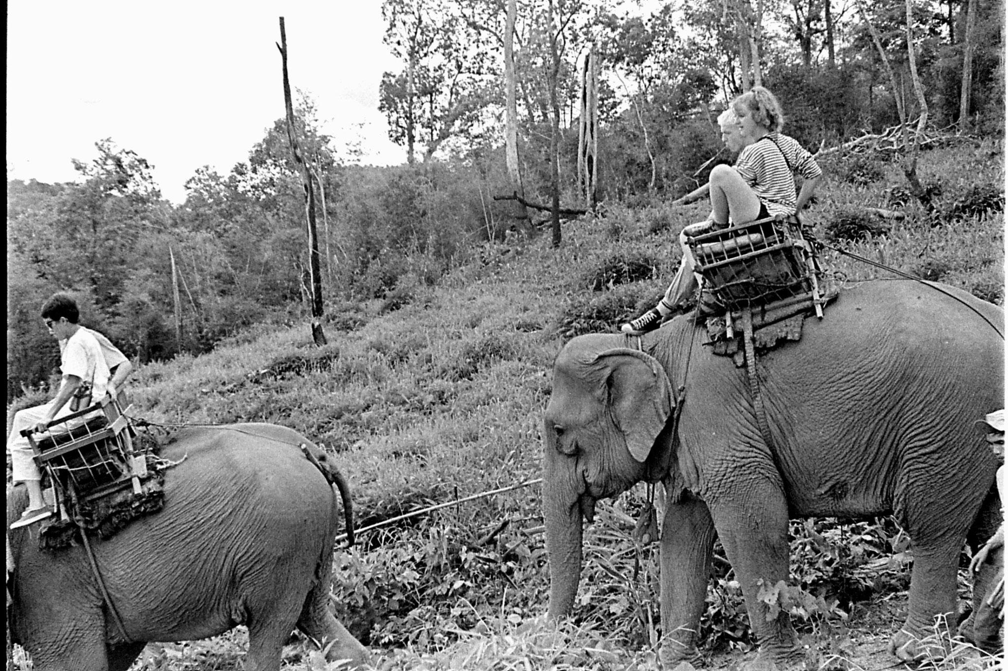 13/6/1990: 29: Last day of Trek, on elephant