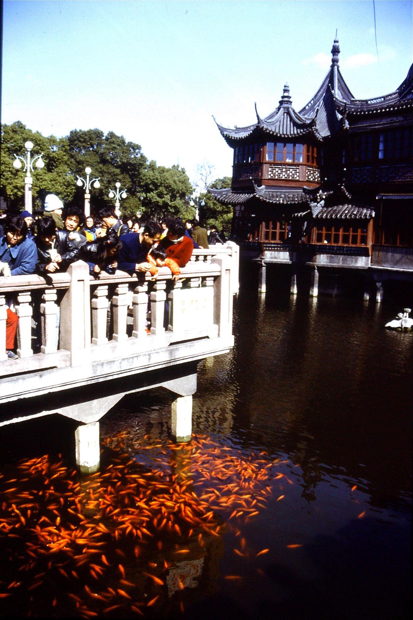 10/2/1989: 32: Yuyuan Gardens