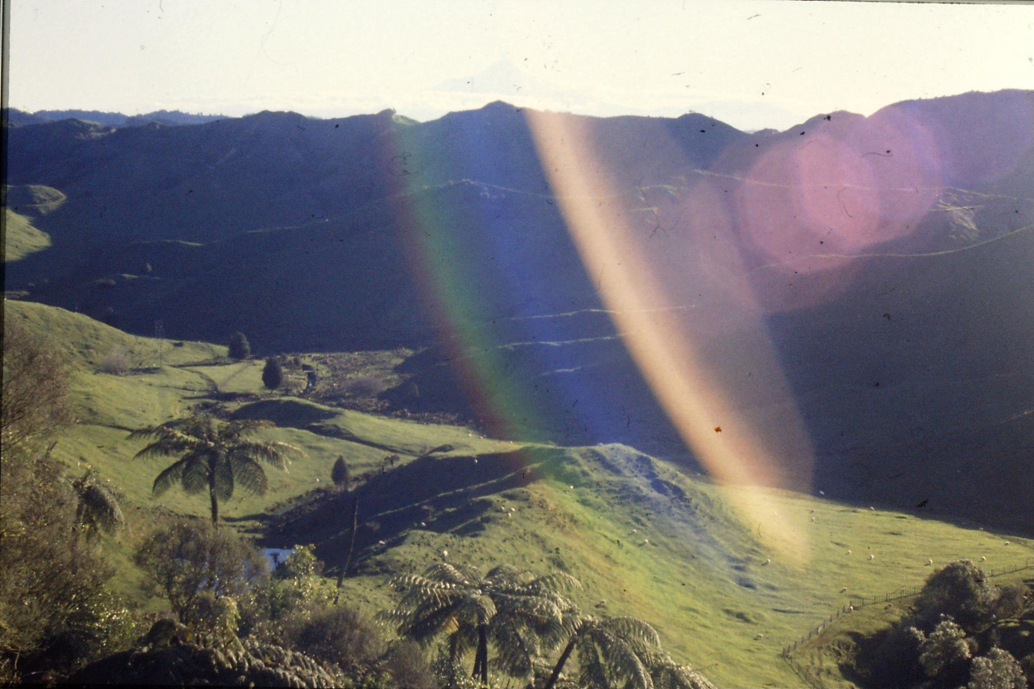 28/8/1990: 22: Mt Egmont from Pohokura Saddle