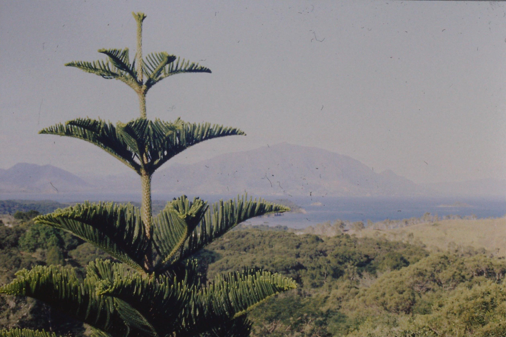 19/7/1990: 11: Noumea looking east from Parc Forestier