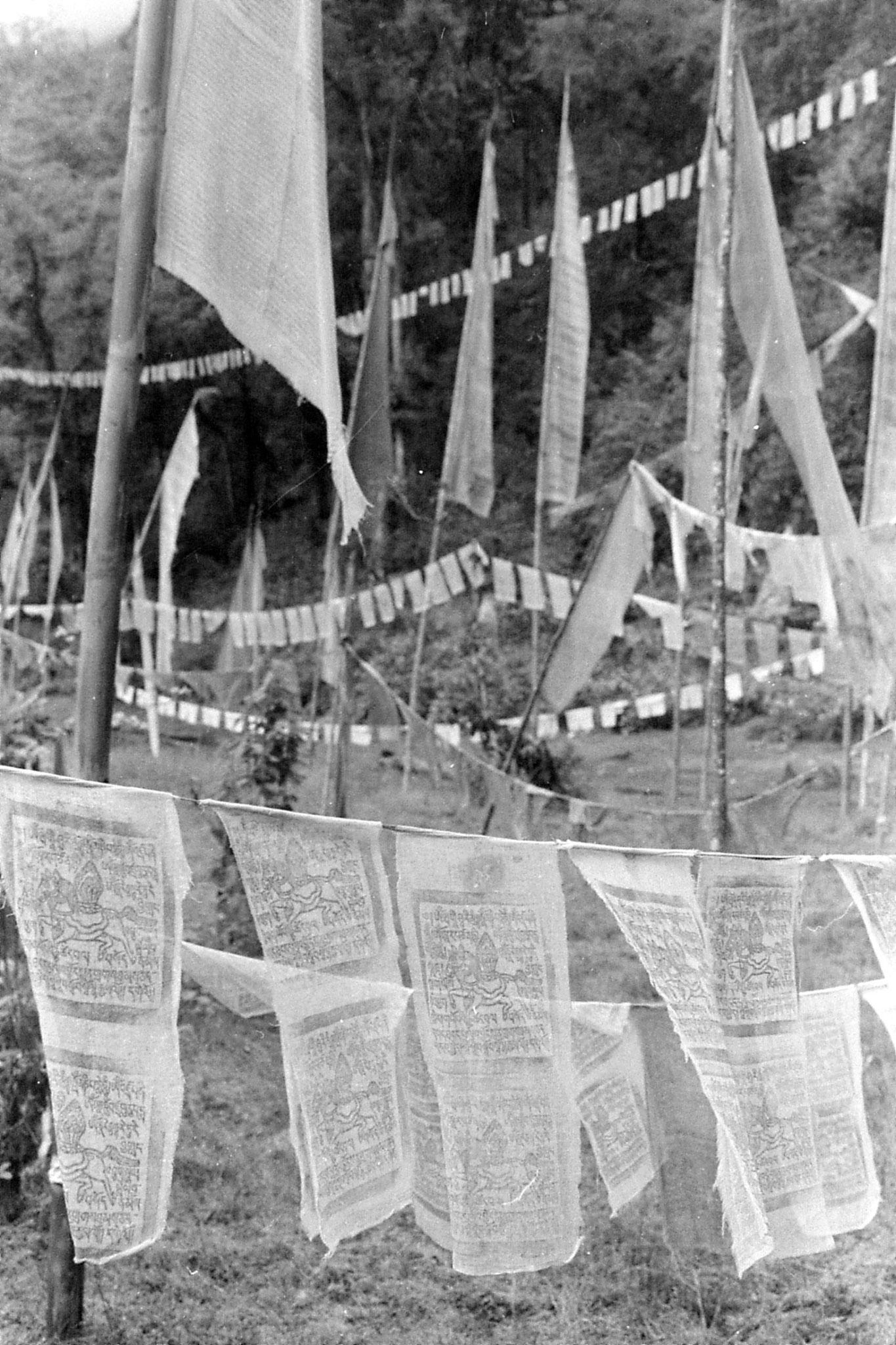 29/4/1990: 34: Khacoed Palri Lake