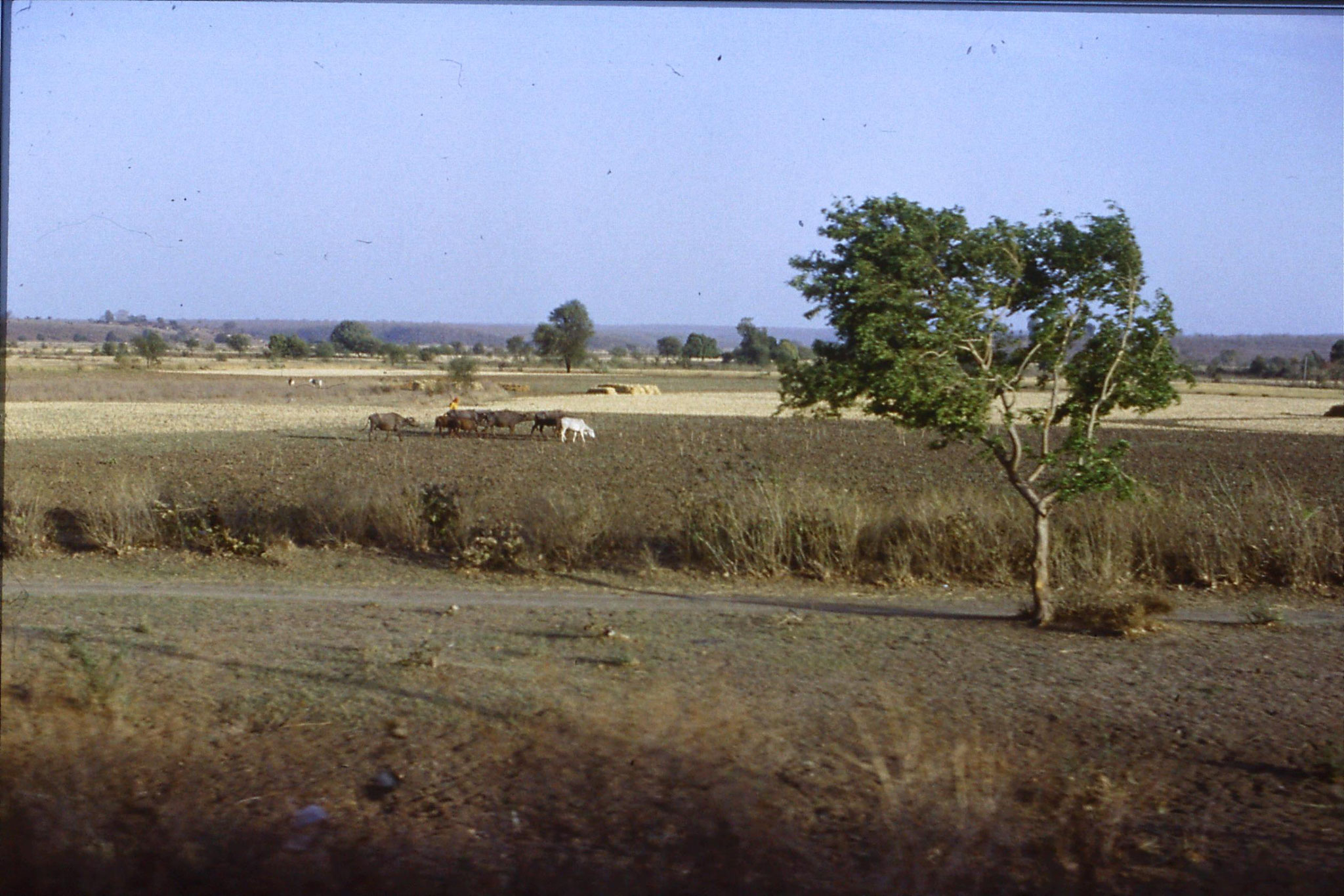 108/33: 24/3/1990 on train soon after Bhopal looking east