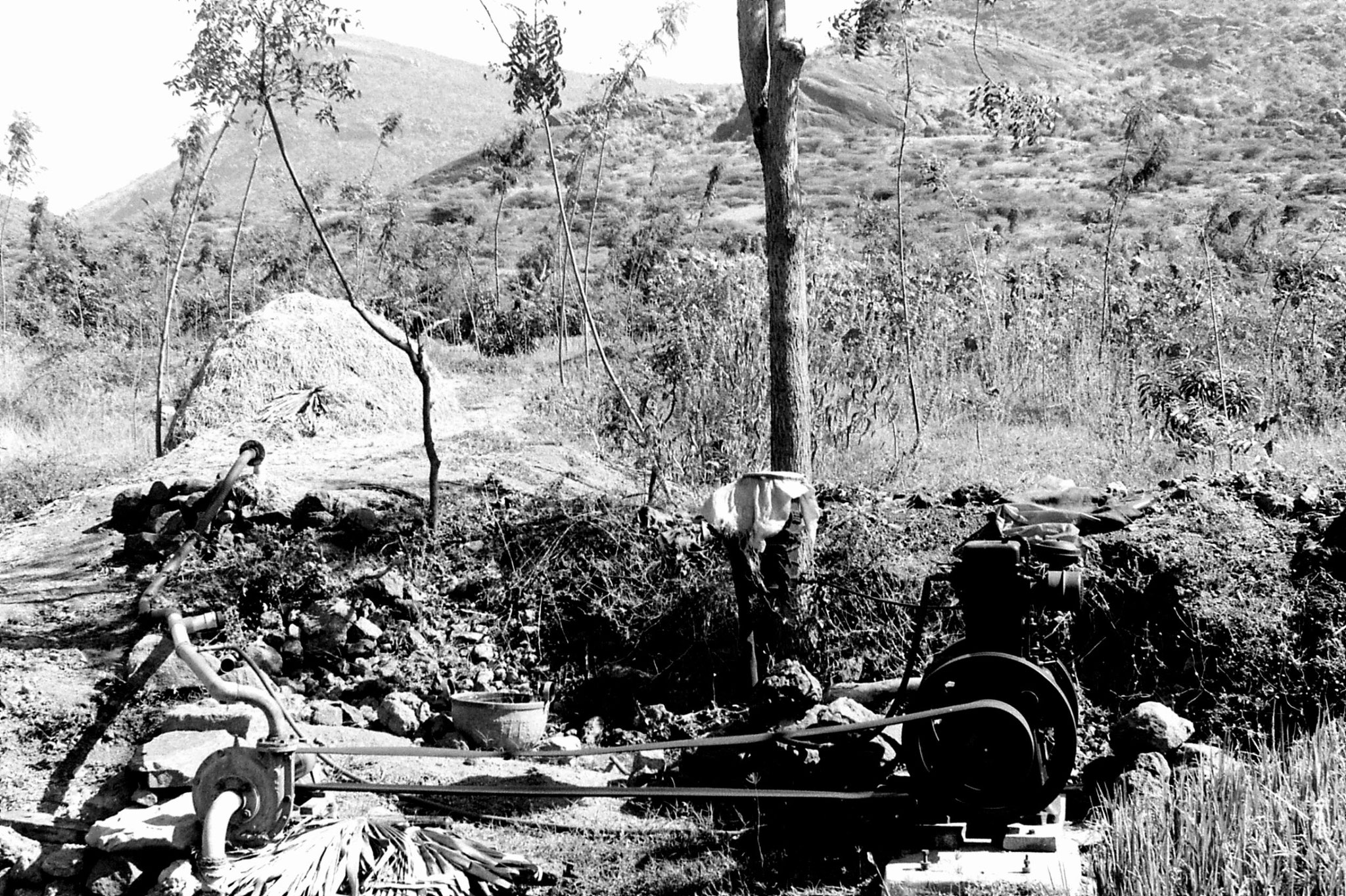 21/2/1990: 18: Batlagundi afforestation project