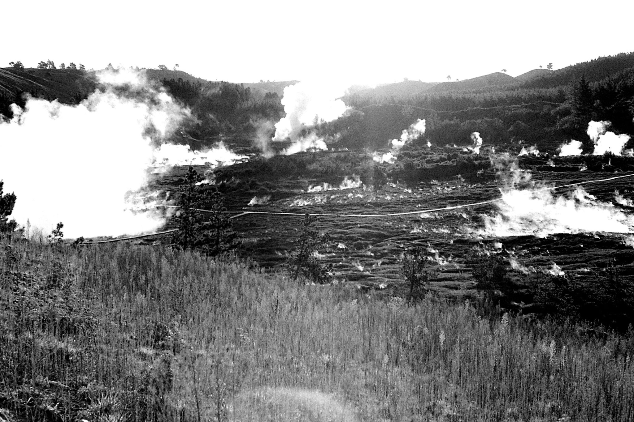 30/8/1990: 4: craters of the moon n. of Taupo