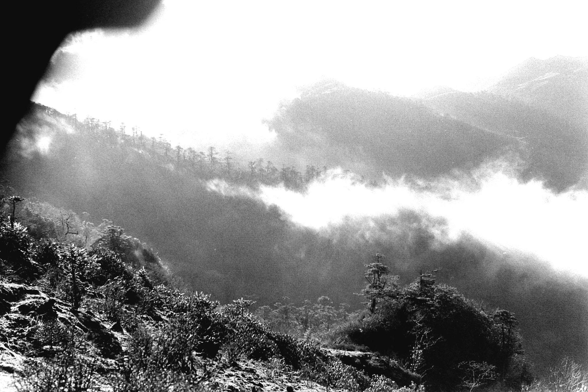6/5/1990: 14: Sandakpu NW, near hills