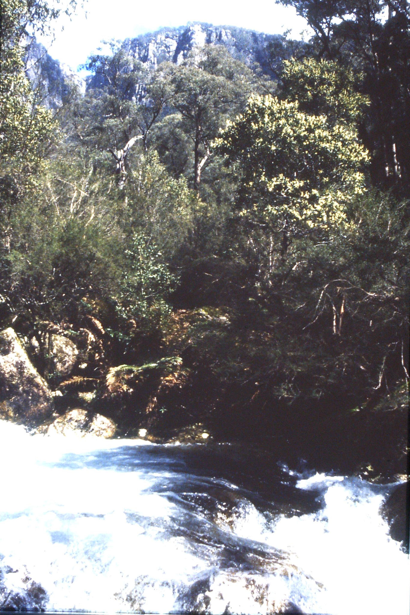 28/9/1990: 32: Mt Buffalo water falls (Crystal Brook Falls at top)