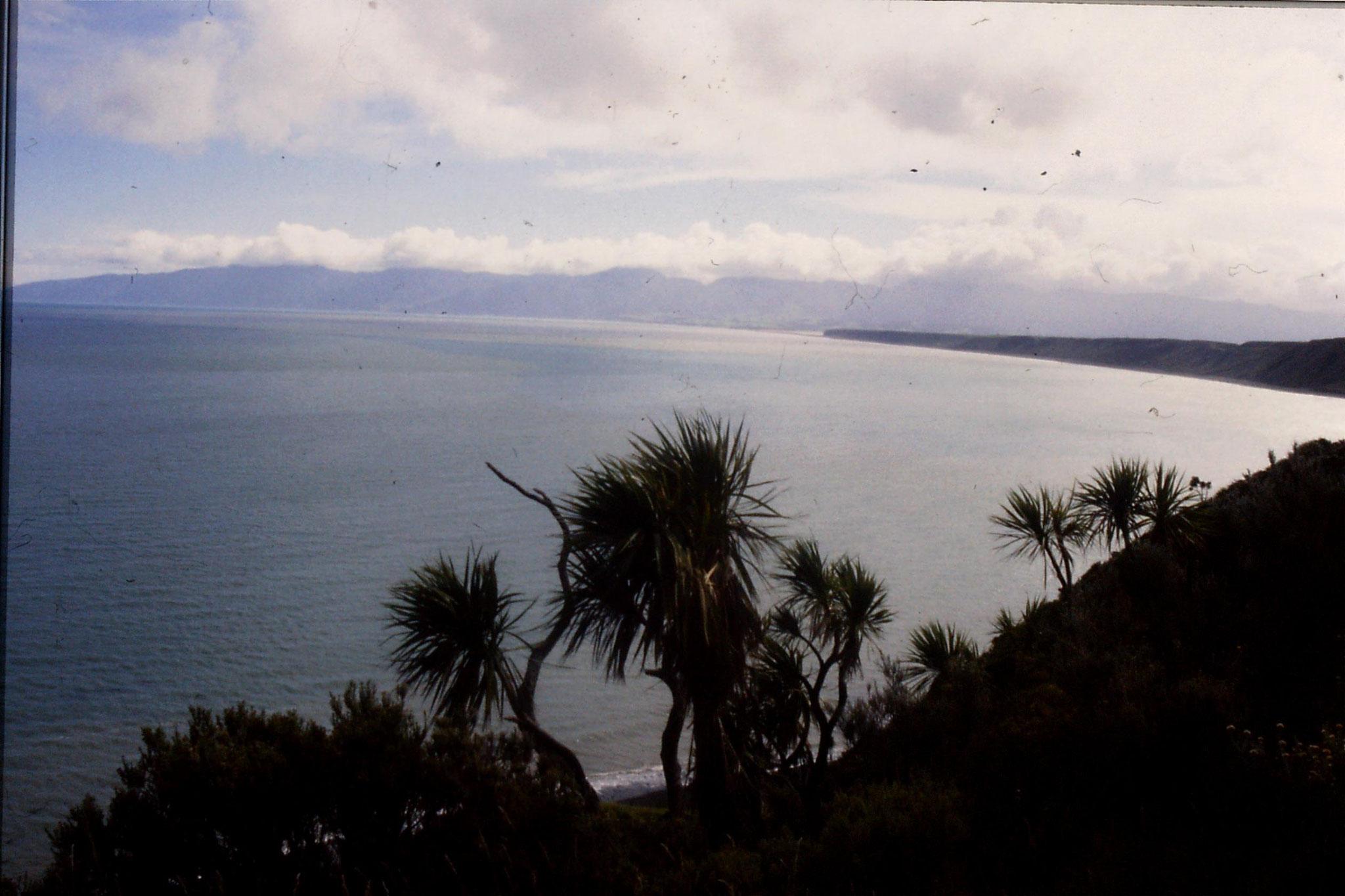 26/8/1990: 10: East of Wellington