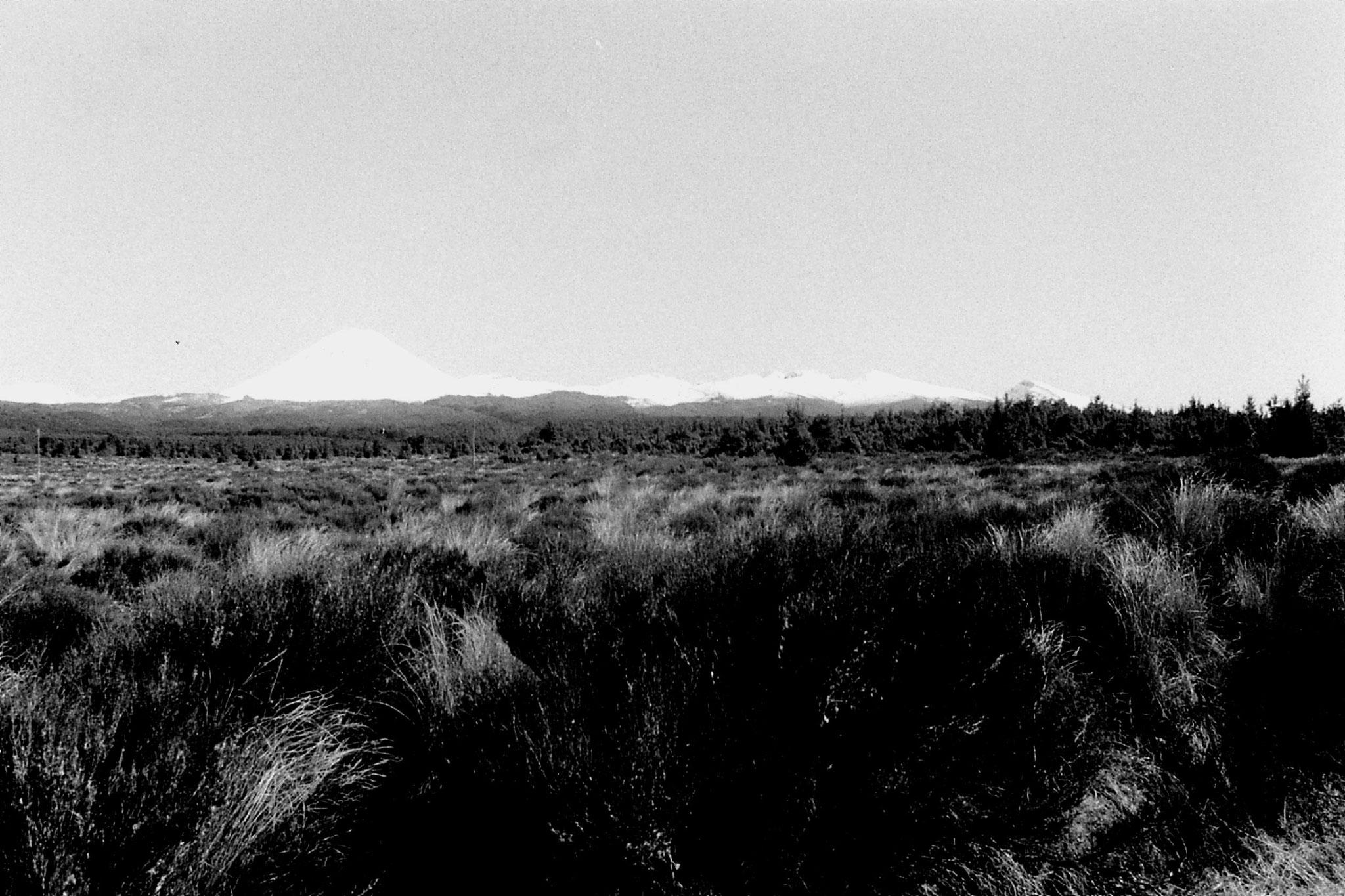30/8/1990: 2: Ruapehu, Near & Tang.. panorama